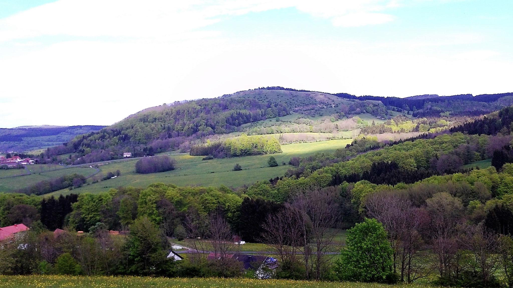 Blick vom Rengersfelder Küppchen auf den Simmelsberg