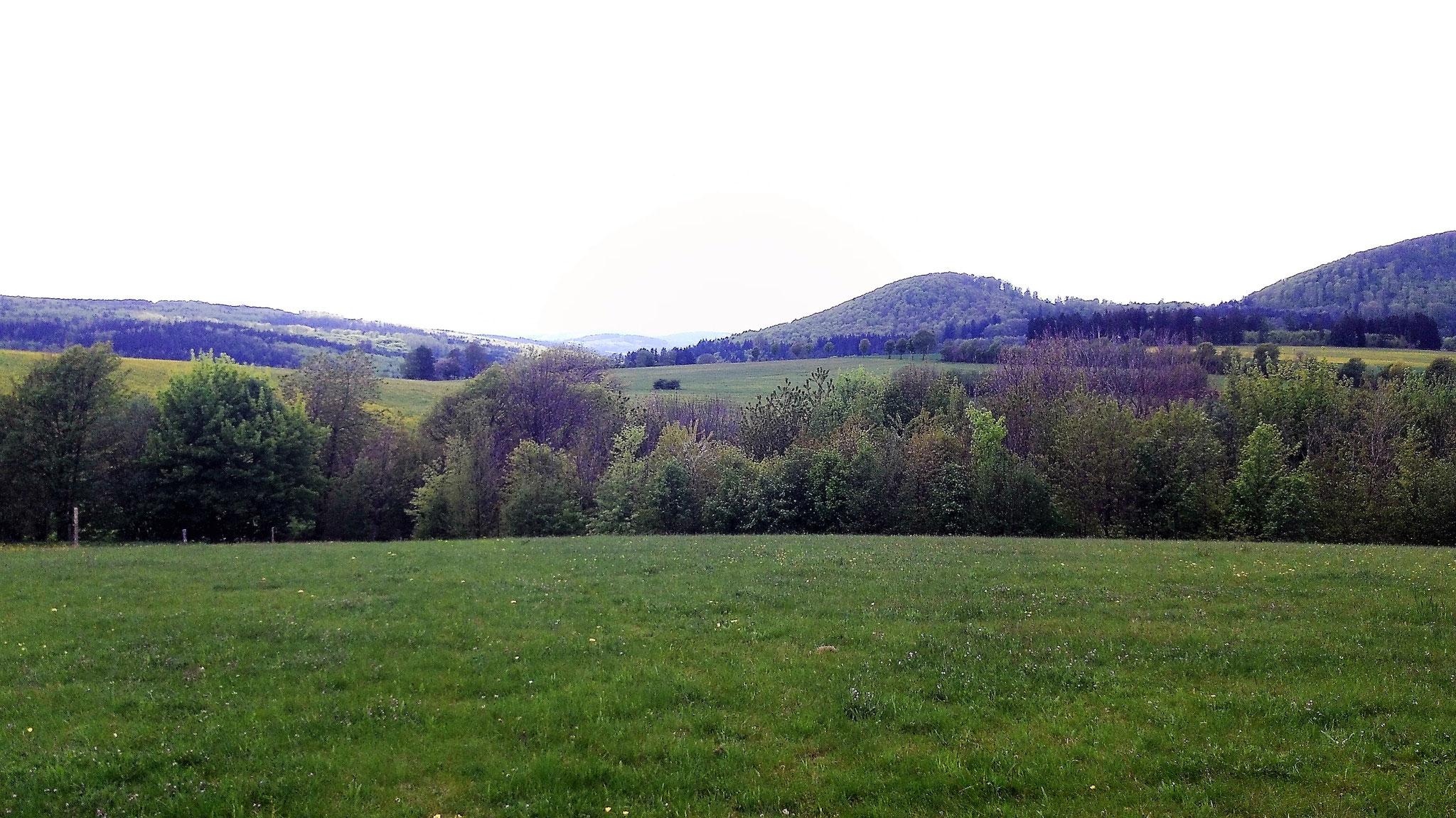 Blick vom Rengersfelder Küppchen Richtung Westen