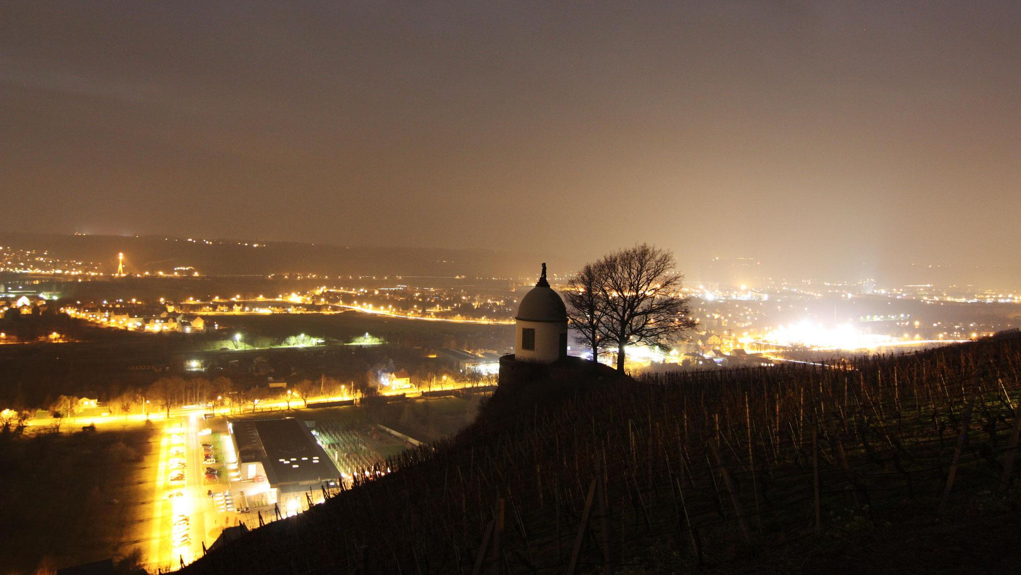 Blick von der Sternwarte über die Weinberge ins Tal nach Dresden