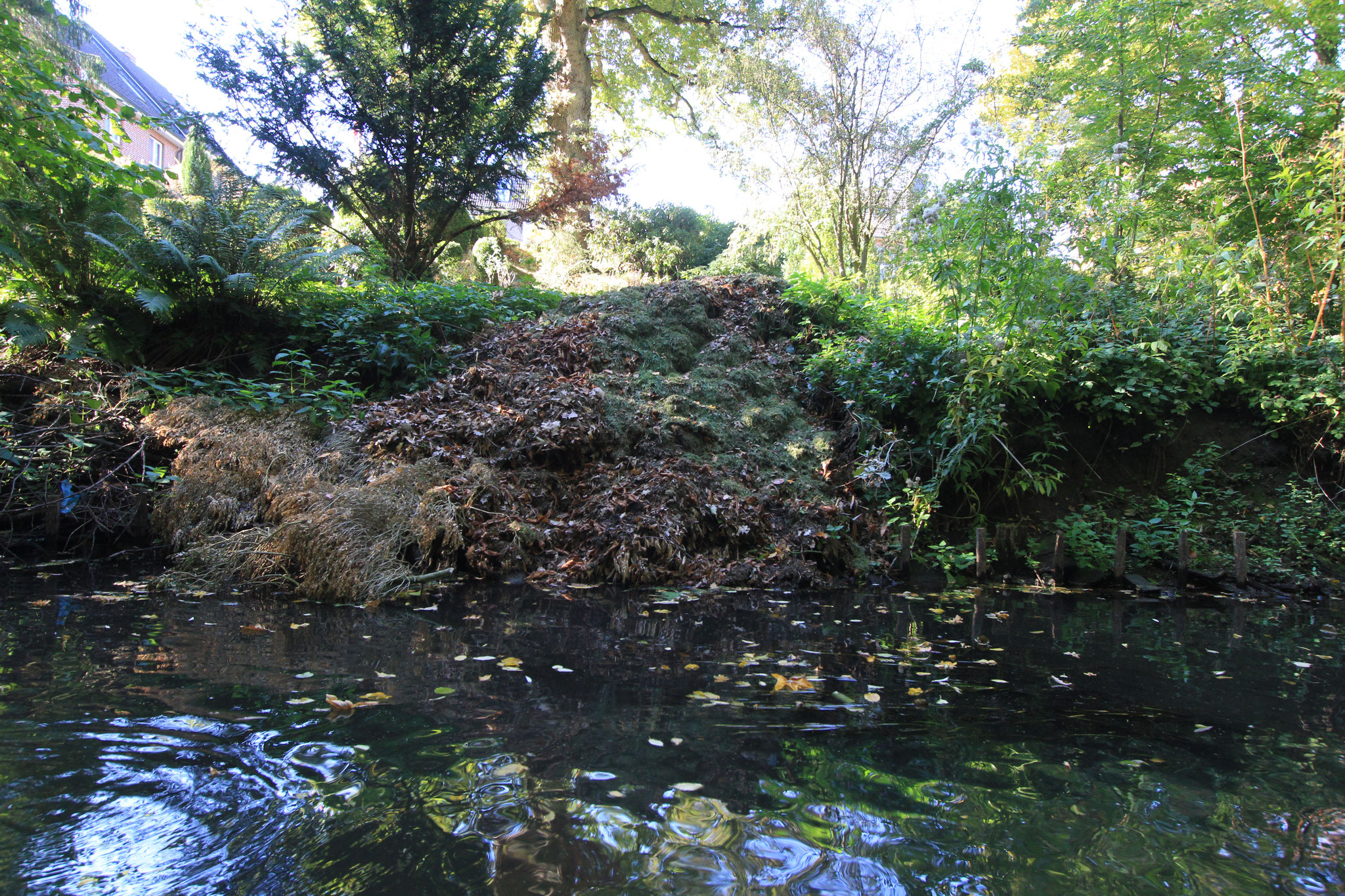 Wichtige Lebensraumstrukturen werden von den Abfällen übrdeckt (Foto: A. Lampe).
