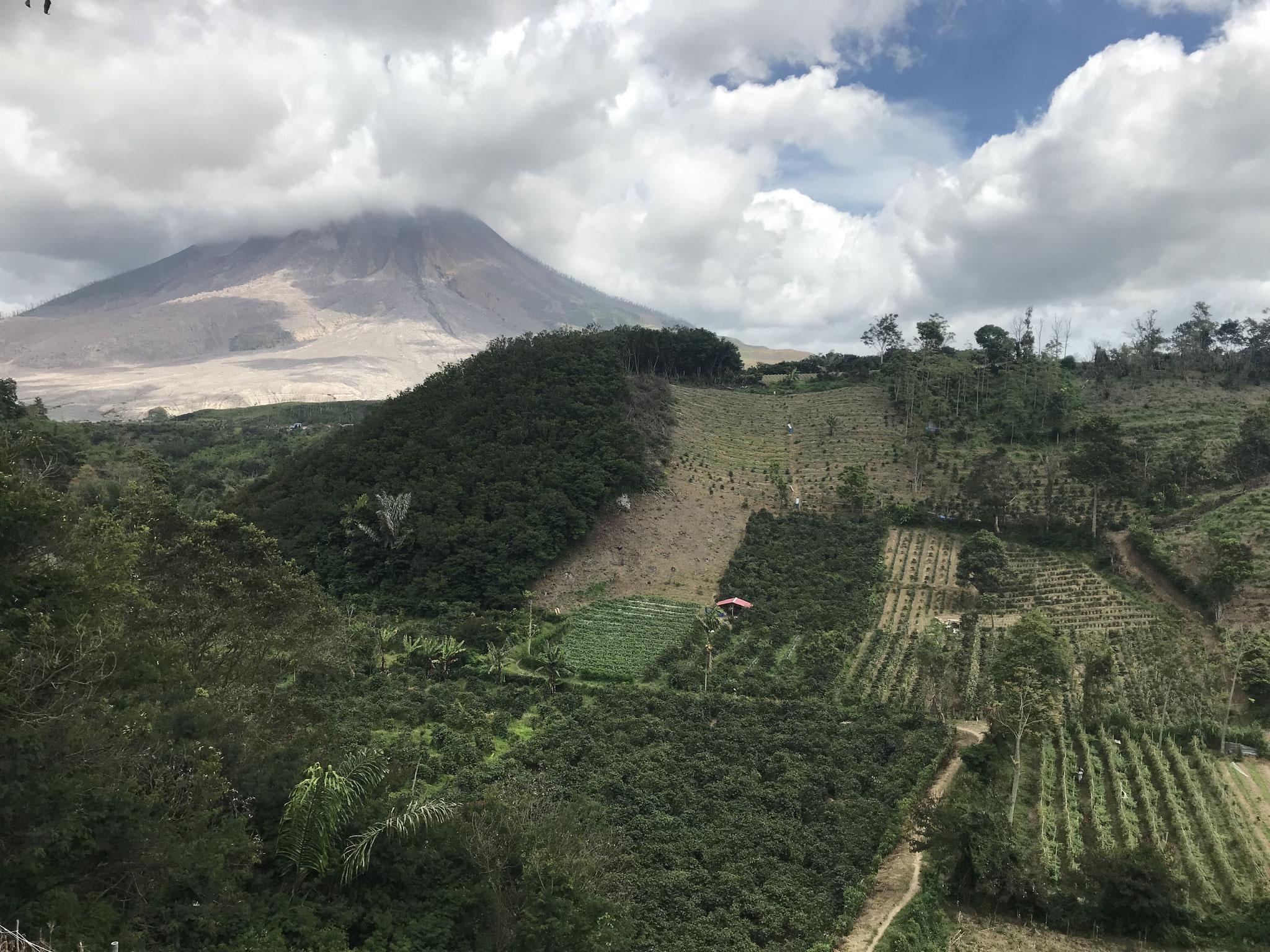 Die Menschen, die einst in den Dörfern am Fusse des Vulkans gelebt haben, bewirtschaften noch immer ihre Felder, auch wenn sie nicht wissen, wann der nächste Ausbruch kommen wird.