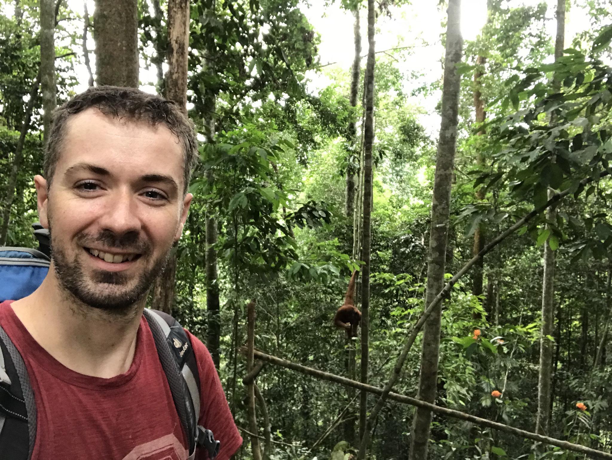Jochen im Dschungel