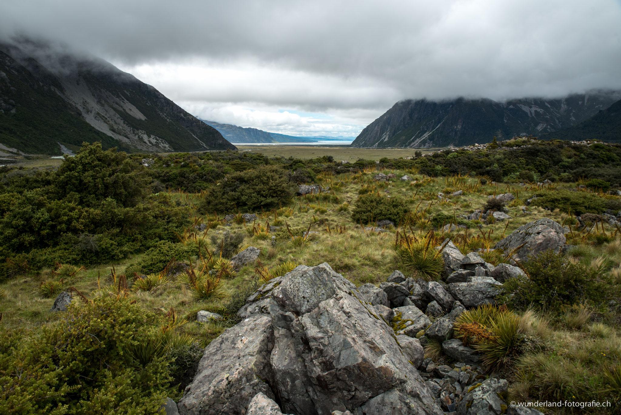 """Mittelerde; die Region rund um den Mount Cook ist aus """"Herr der Ringe"""" weltbekannt...."""