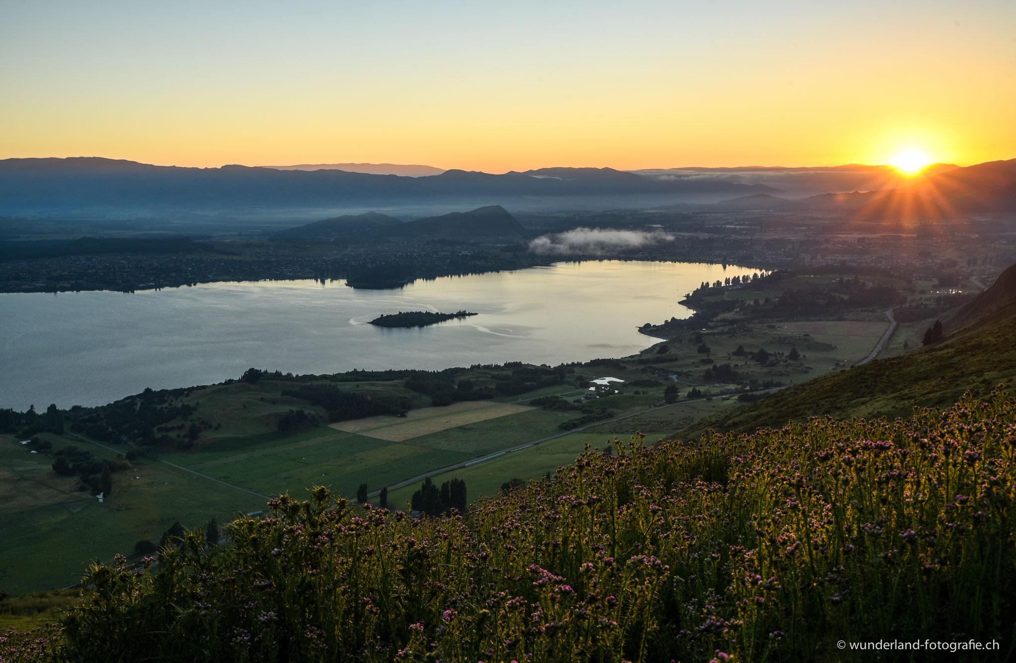Sonnenaufgang am Roys Peak.
