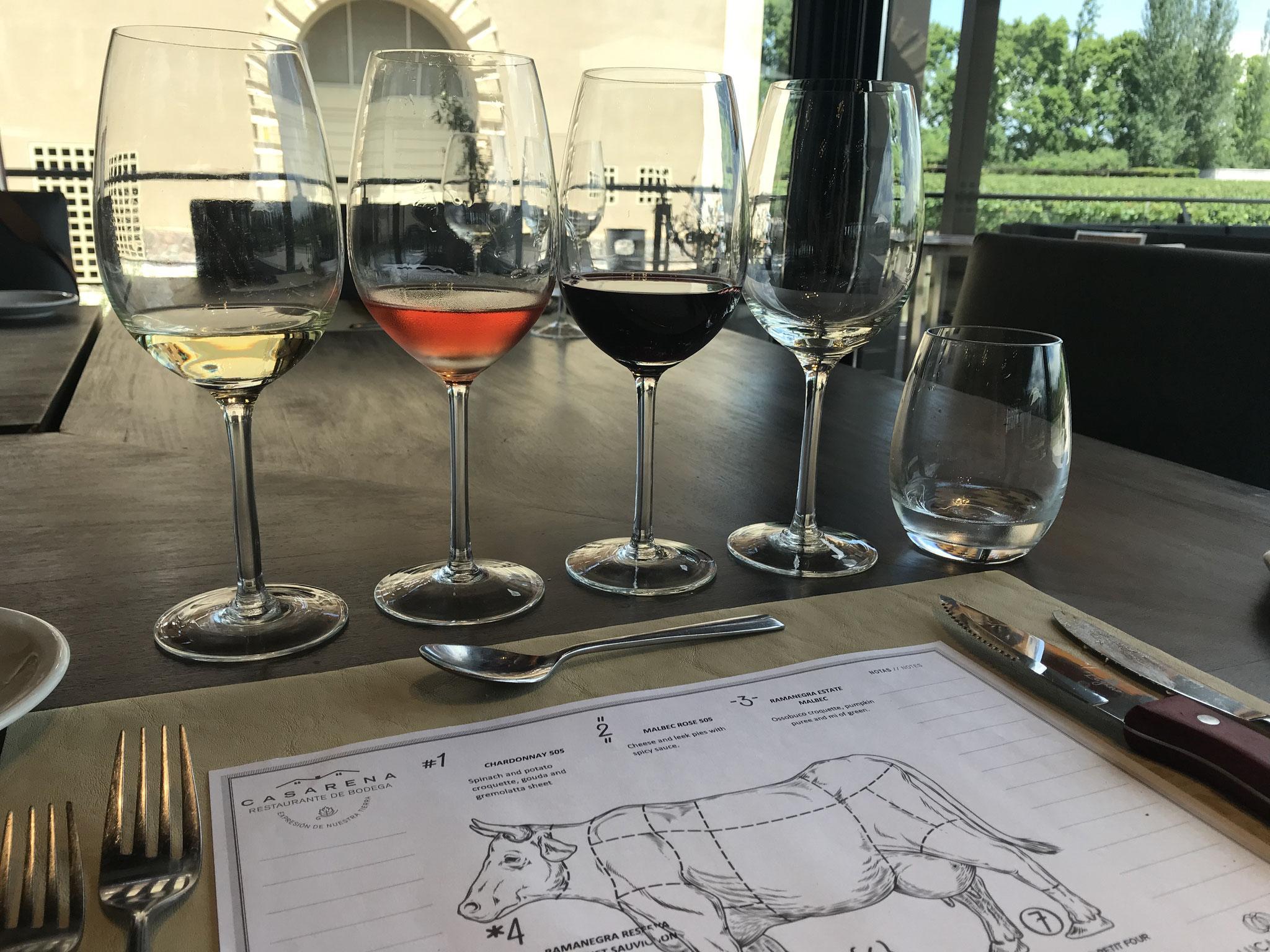Weindegustation in Mendoza