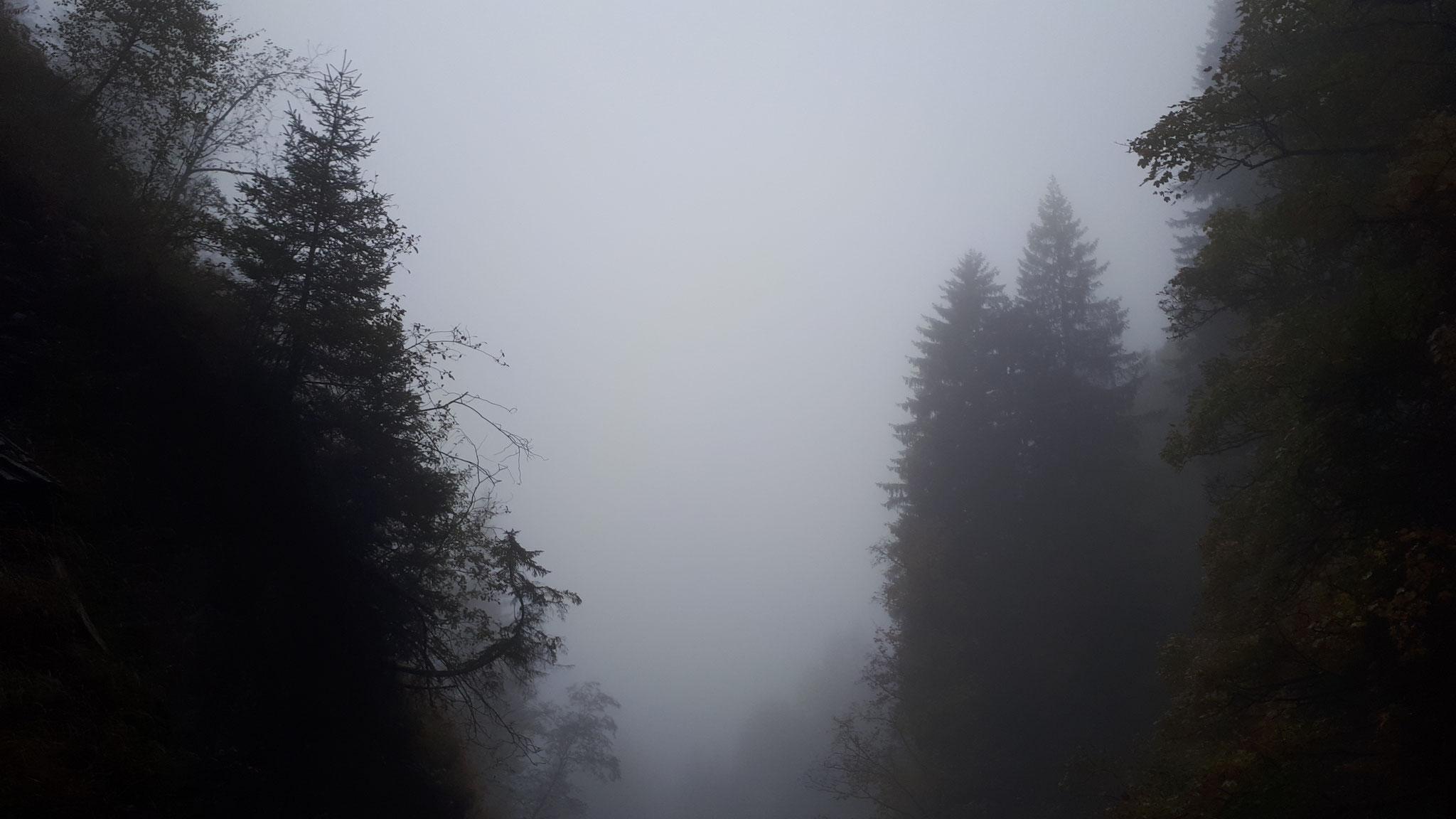 ...der Nebel als eindeutiges Zeichen für das nahende Ende der Saison...