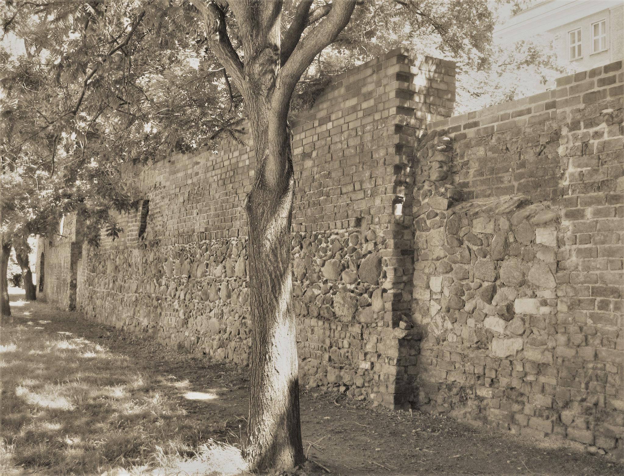 Überreste der ehemaligen Stadtmauer