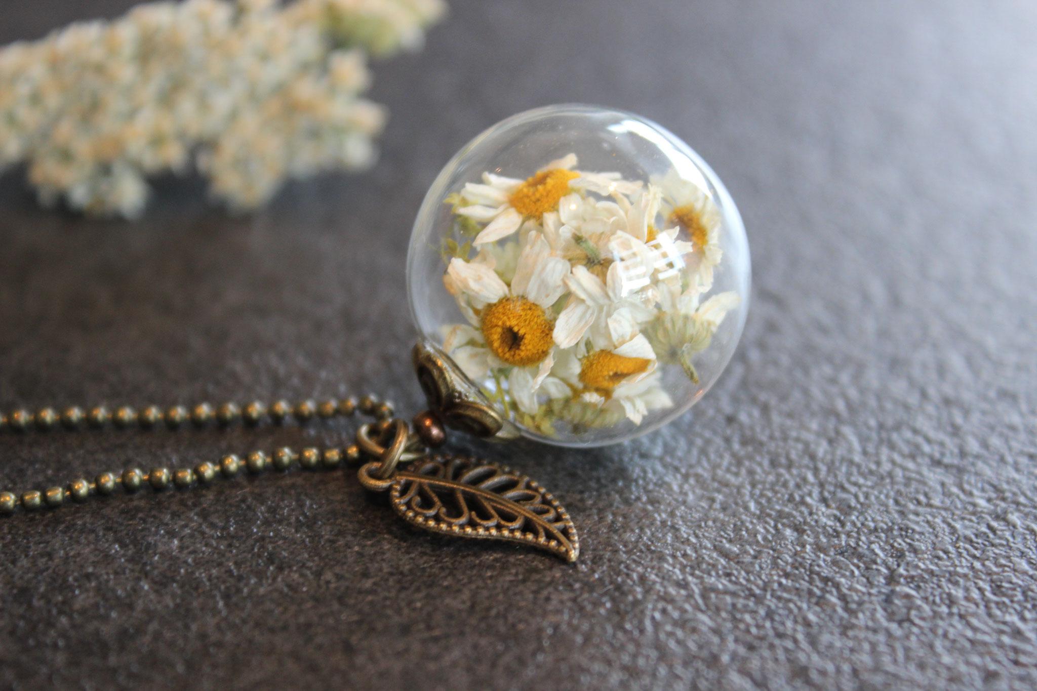Sommerwiese (Margariten)