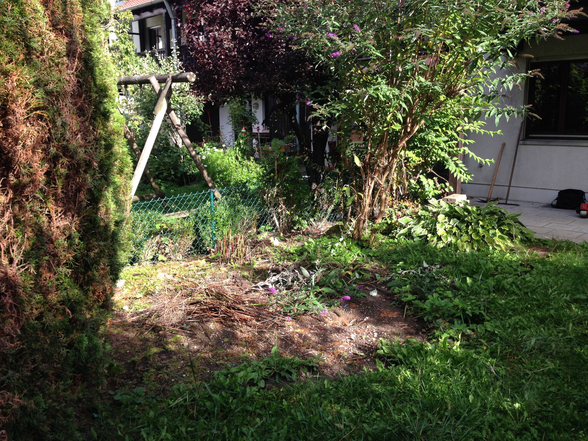 verwilderter Garten, ausschneiden u. Neuanlage Rasen