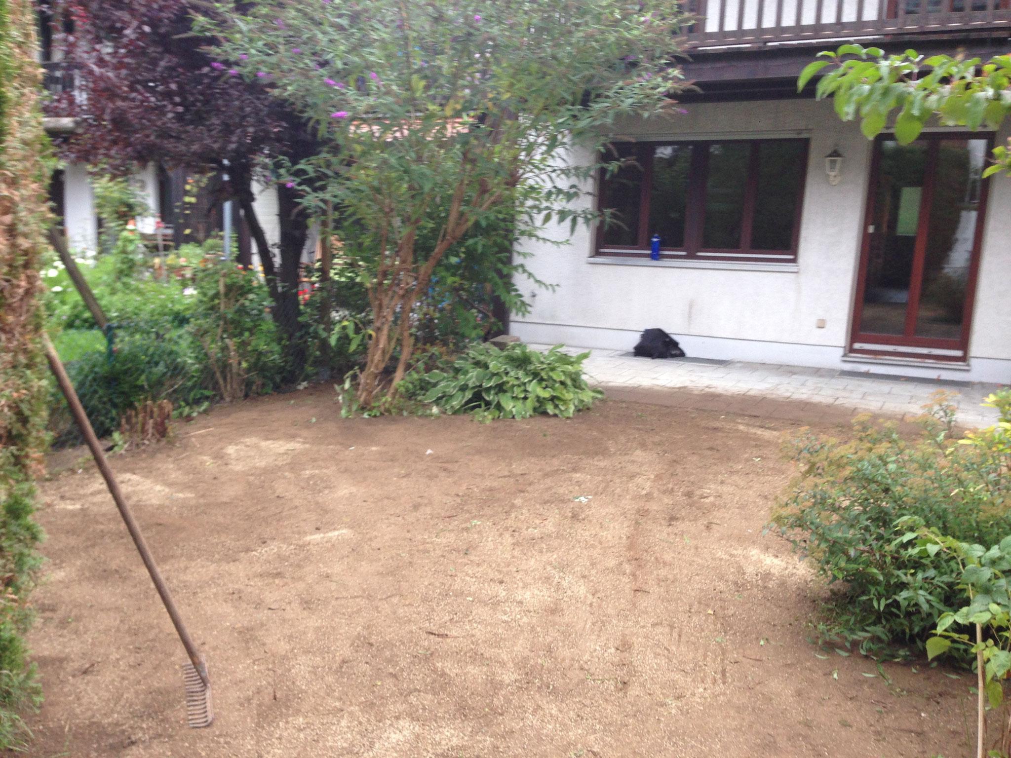 Neuanlage Rasen