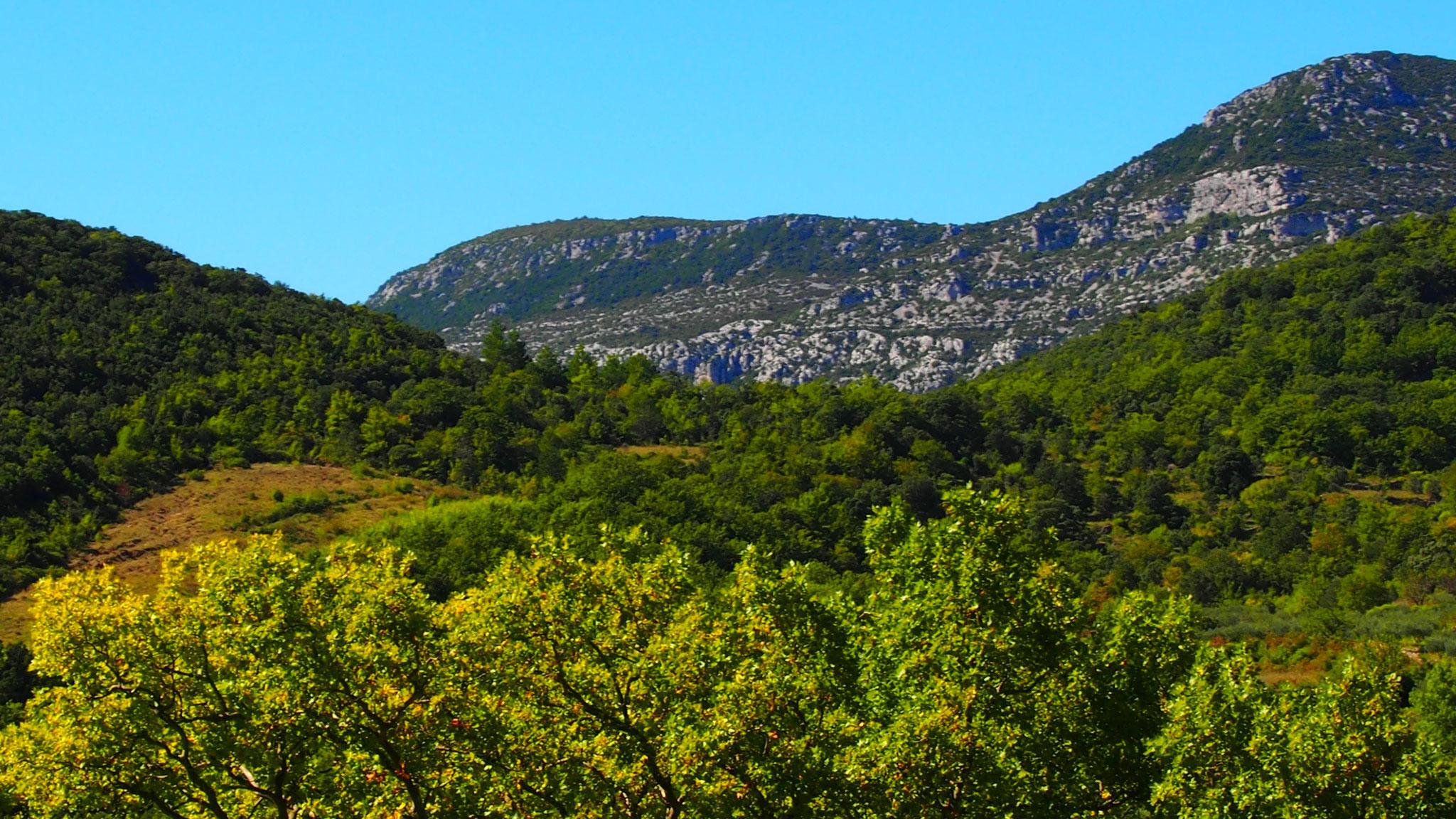 La Séranne et sur la gauche, la colline du mas de la Bau