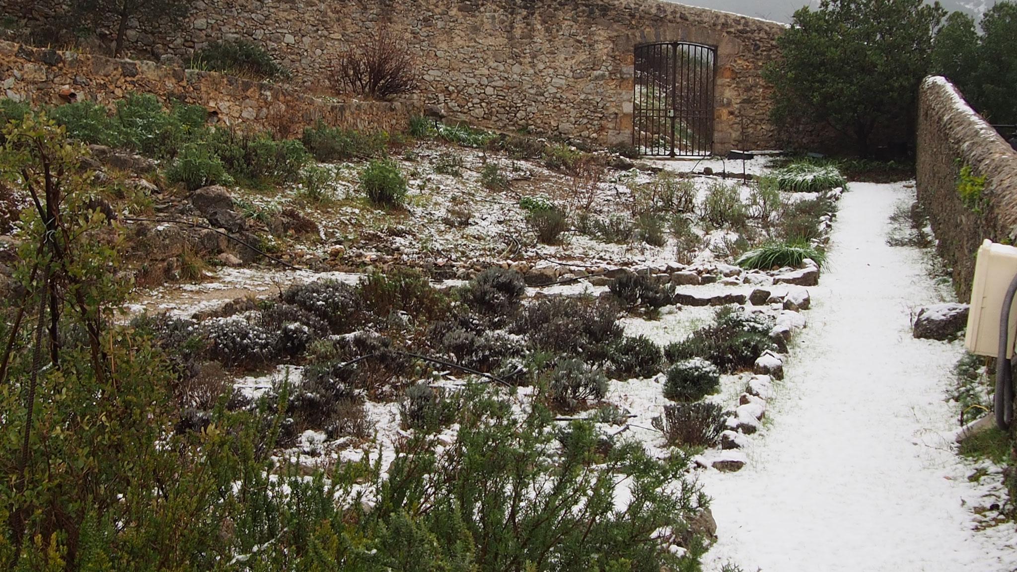 vue du jardin sous la neige depuis la tour Sud