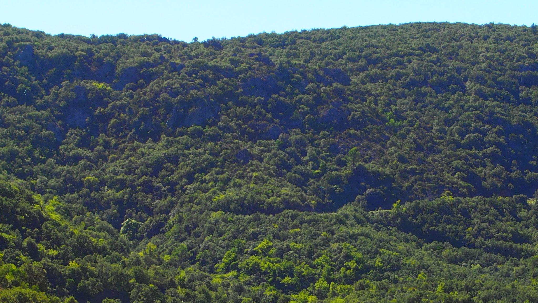 Vue depuis le Château de Baulx sur les collines