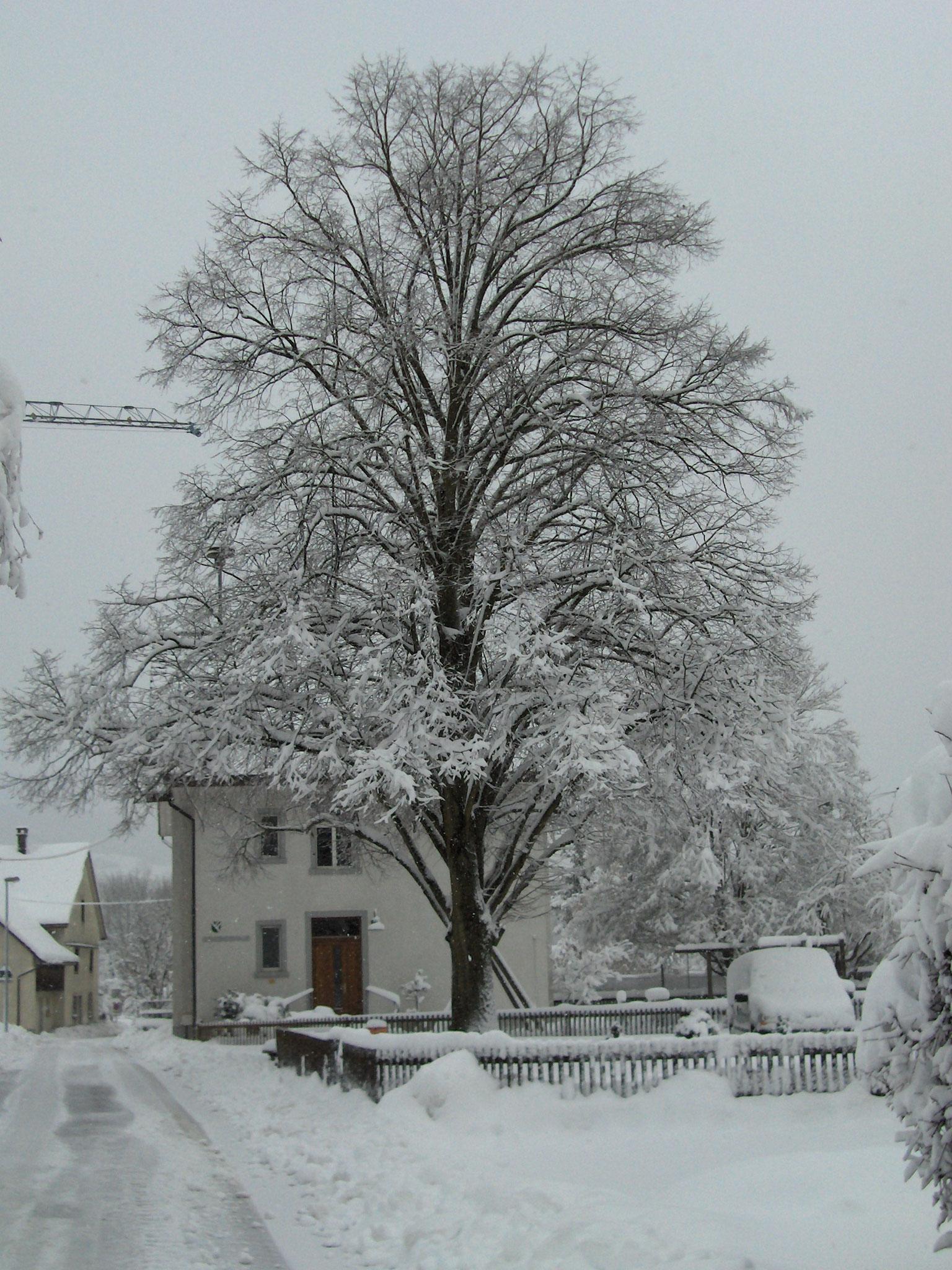 Gemeindehaus Lauffohr (Quelle: Privatfoto)