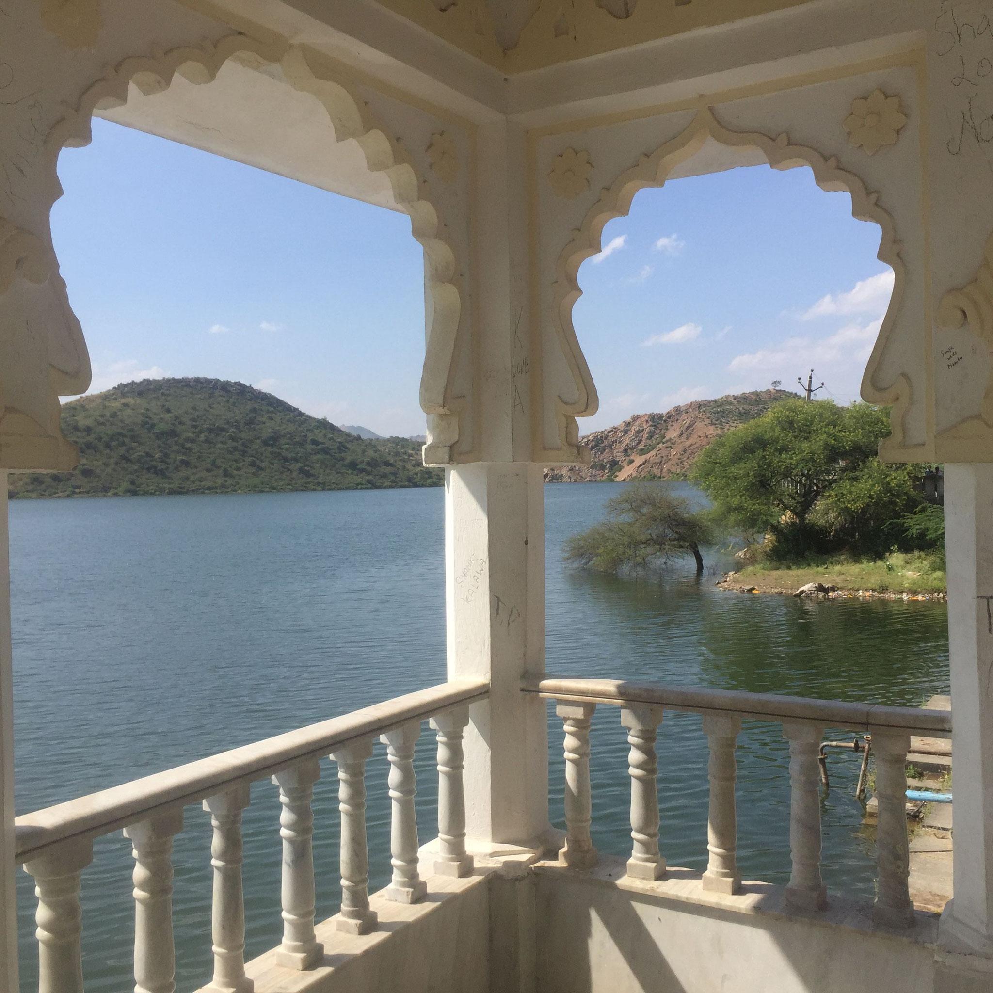 Udaipur Tiger lake Rajasthan