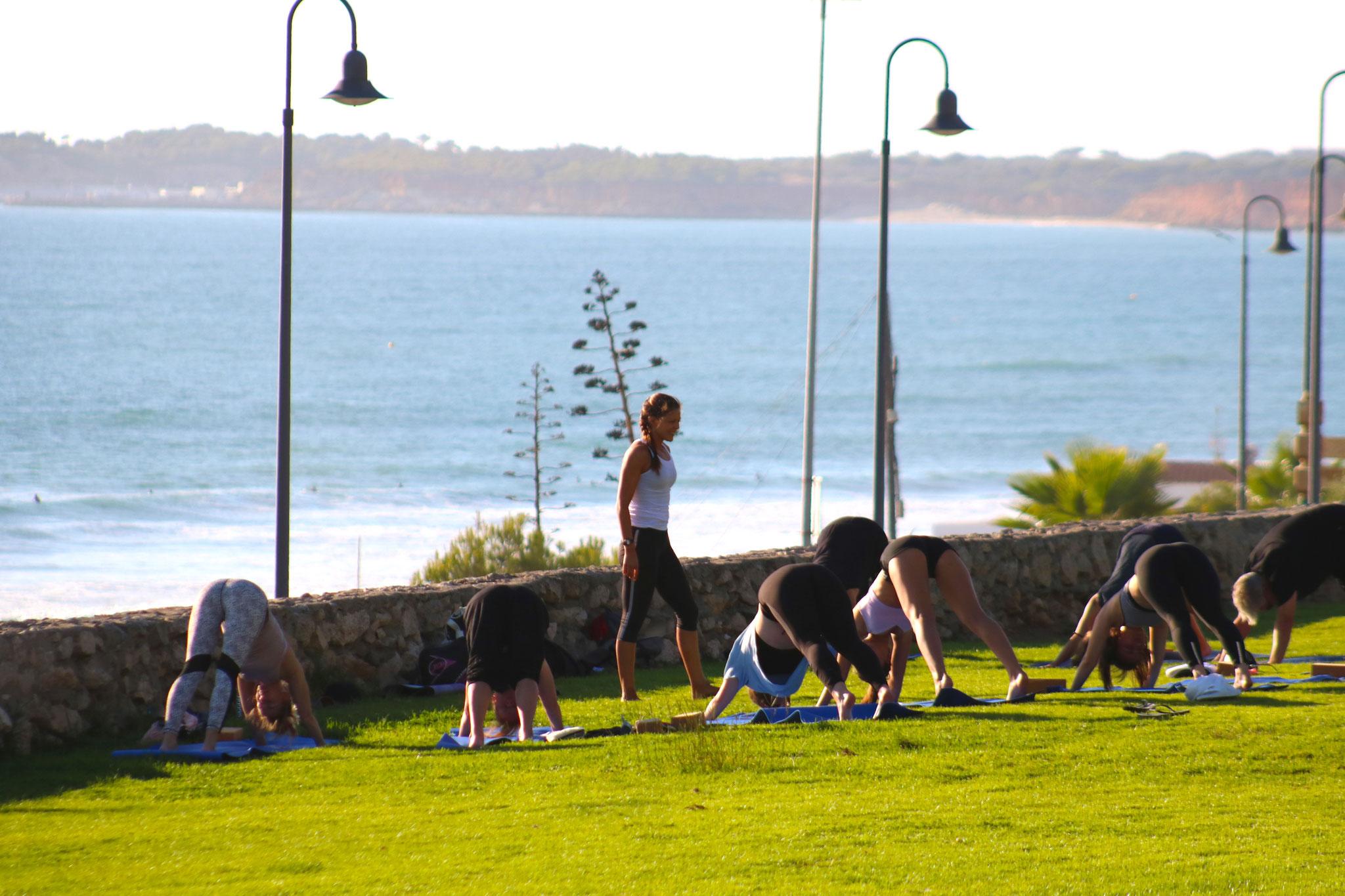 Yoga Kurse für Anfänger