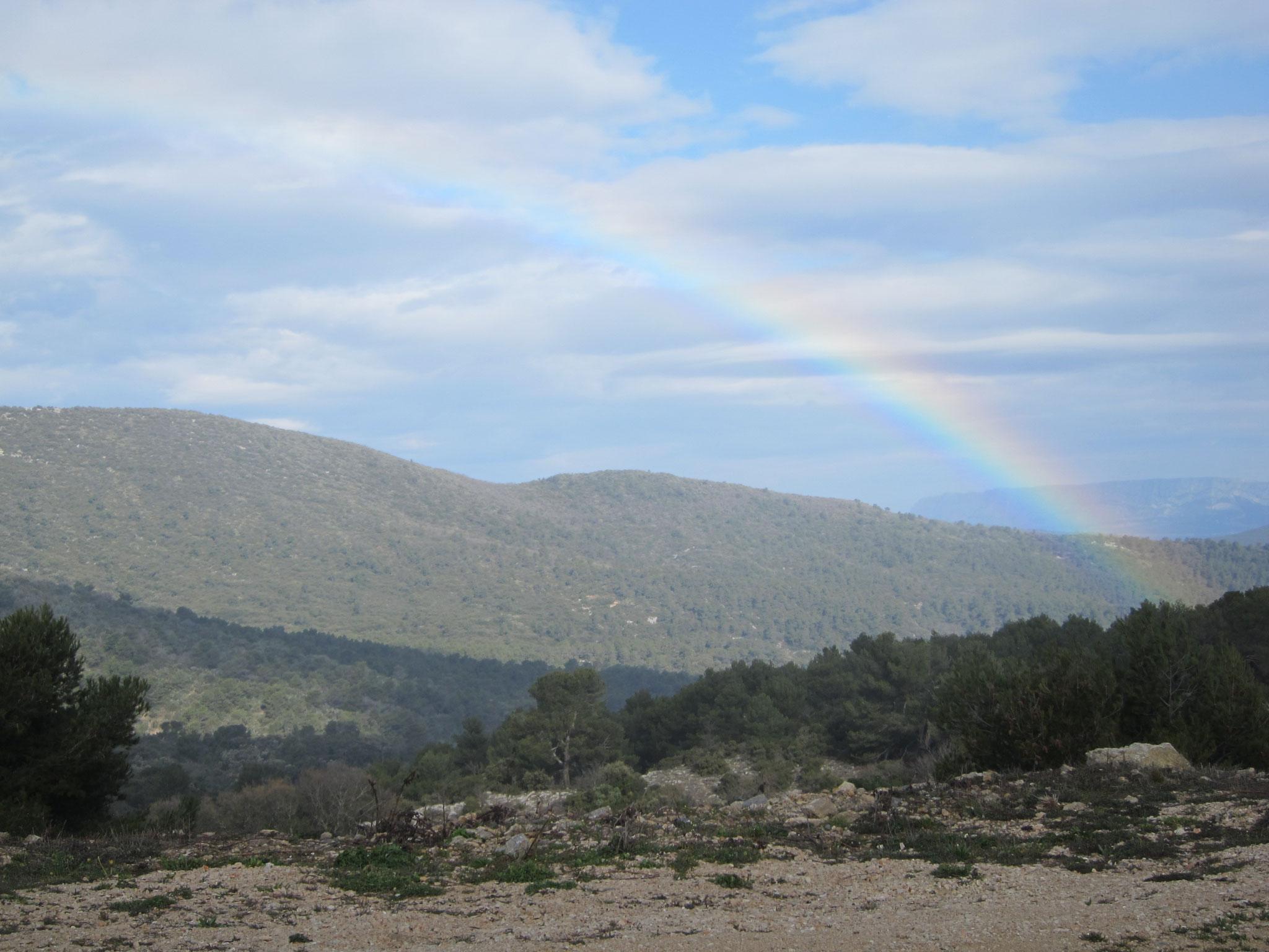 反対側になんと虹がかかりました!