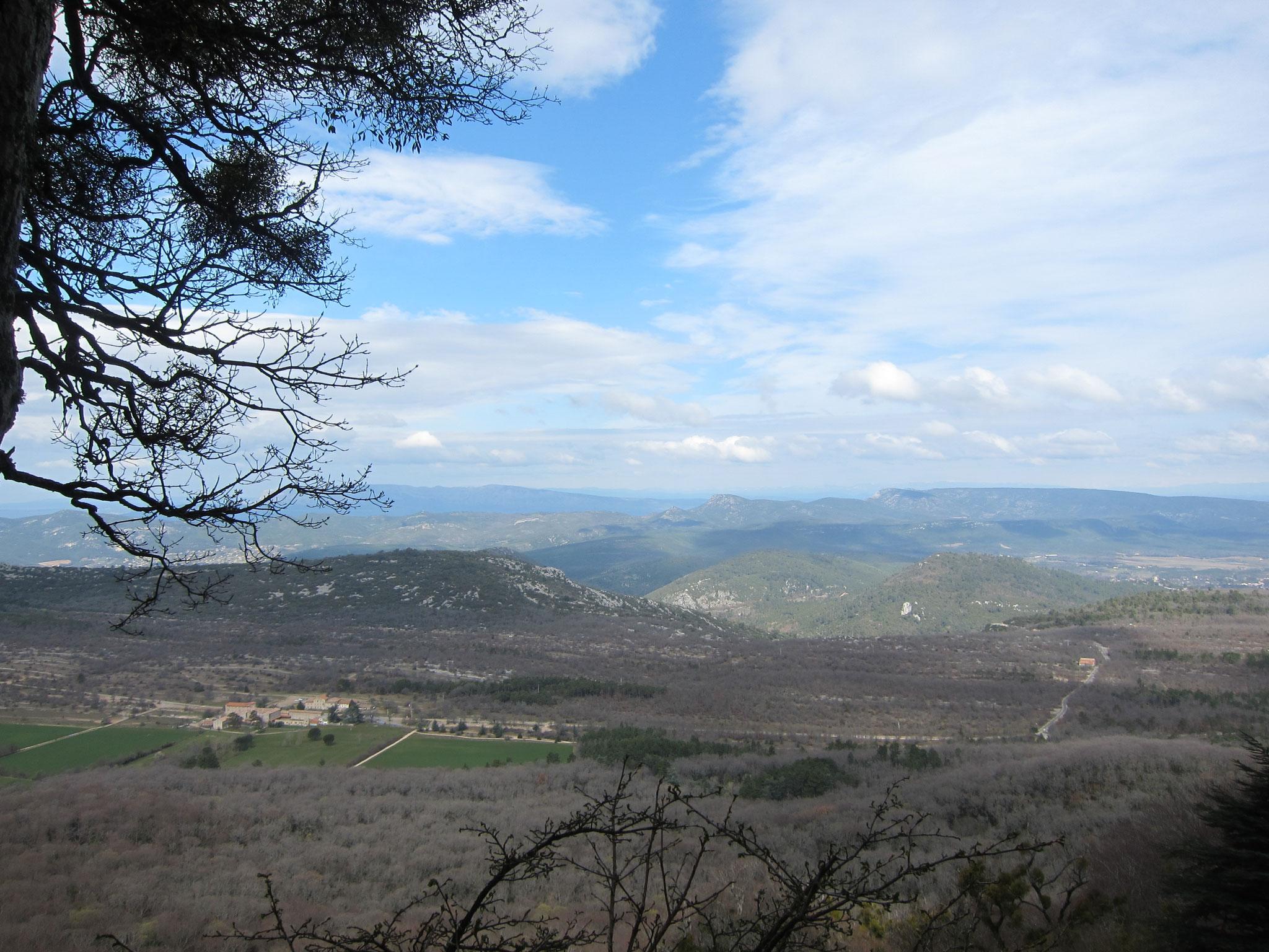洞窟前からの景色