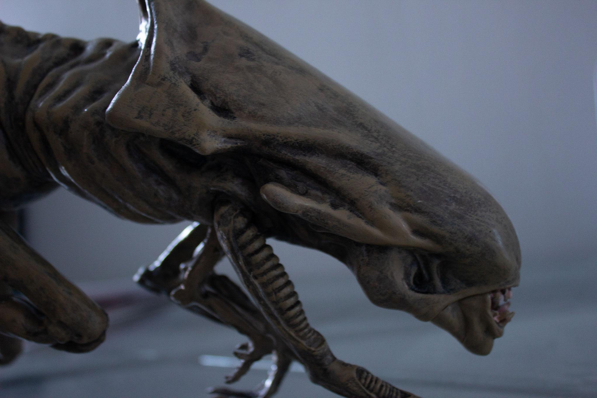 Keine Angst - unser Alien tut Euch nichts. Denen in VR solltet Ihr aber aus dem Wege gehen ;)