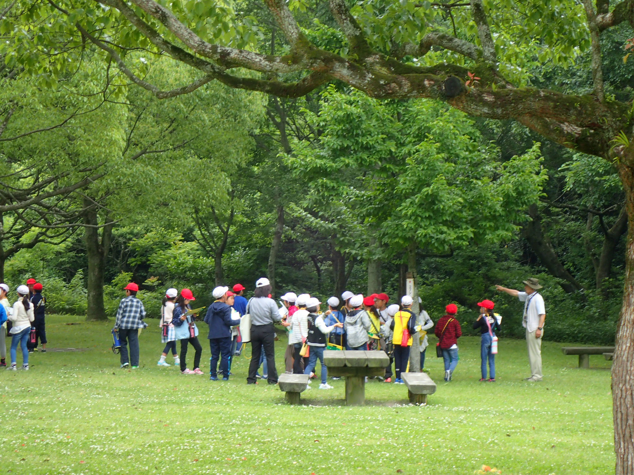 市内の小学生を対象とした環境アクティブラーニング