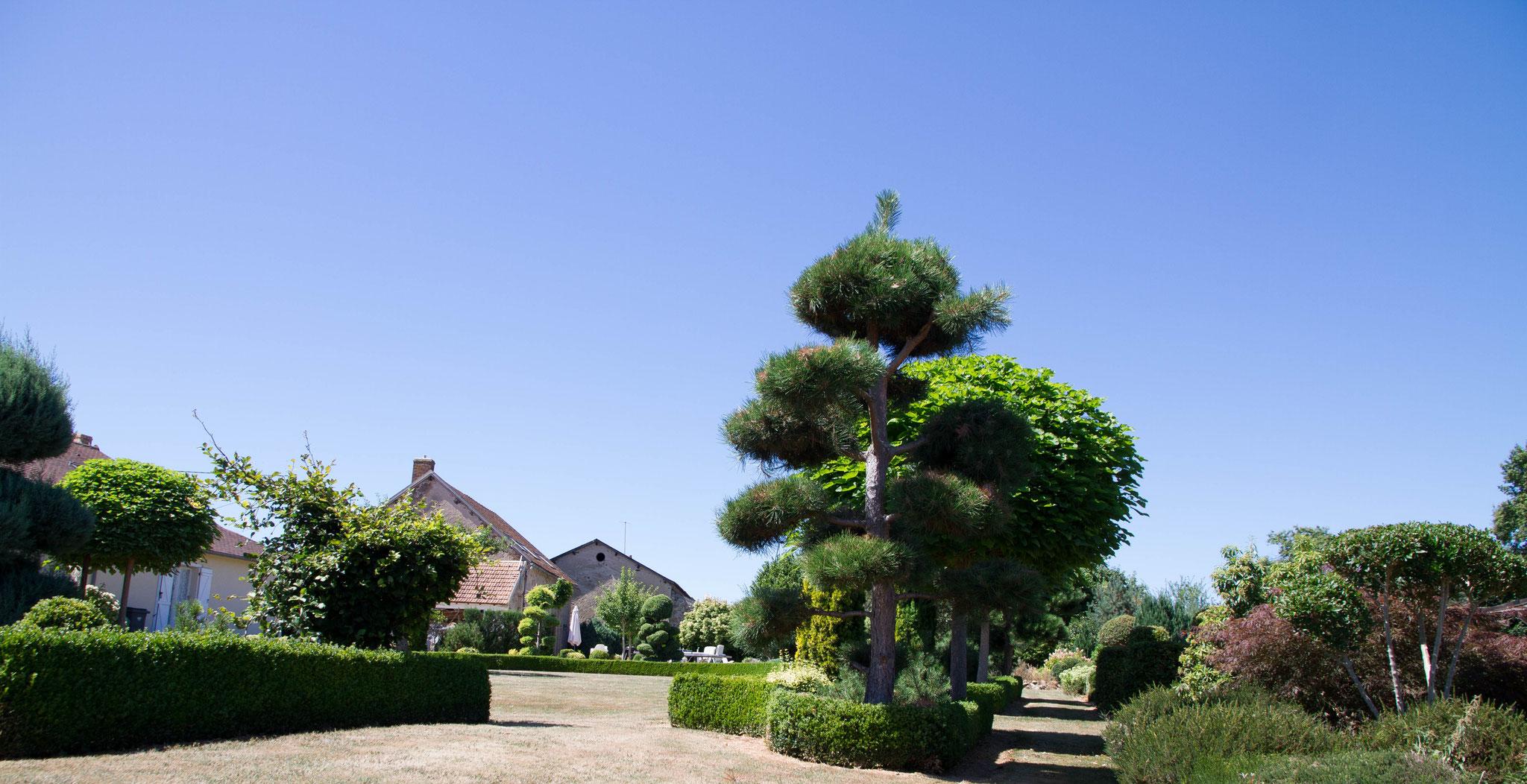 Schitterende Villa met zwembad en Gite met Engelse tuin!