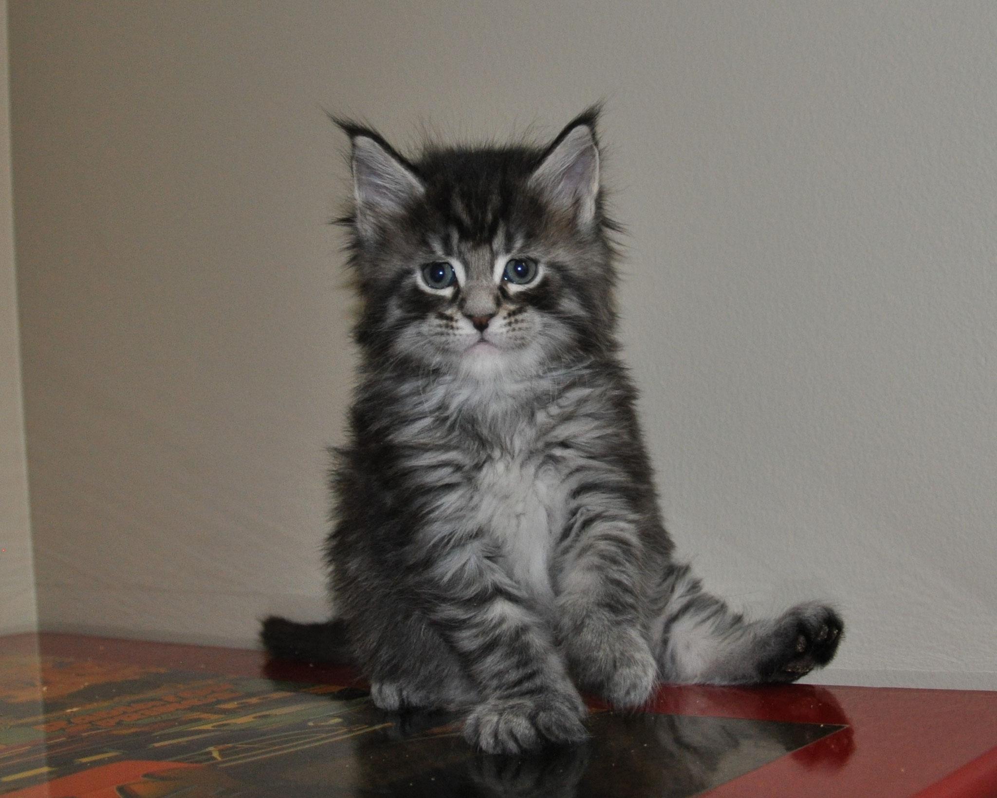 Ezra, 5 weeks