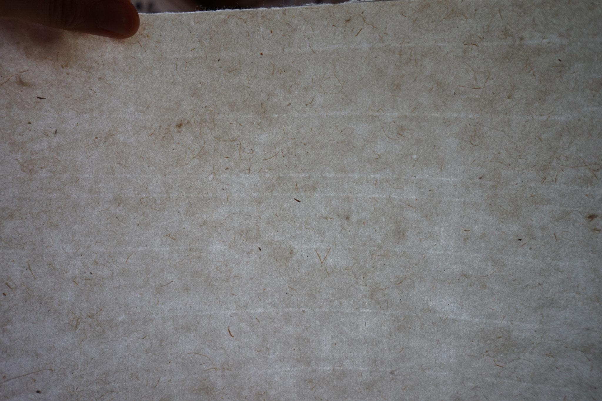 能登仁行和紙 壁紙 竹紙 自然素材