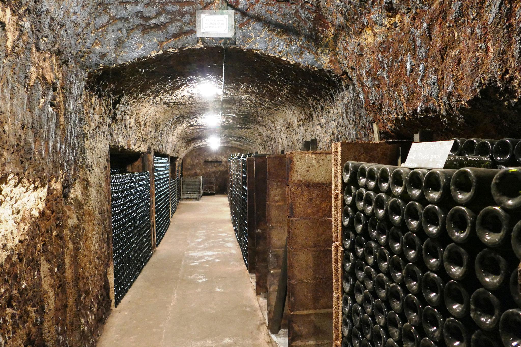 """visite des""""caves Cathelineau"""" à Chancay"""