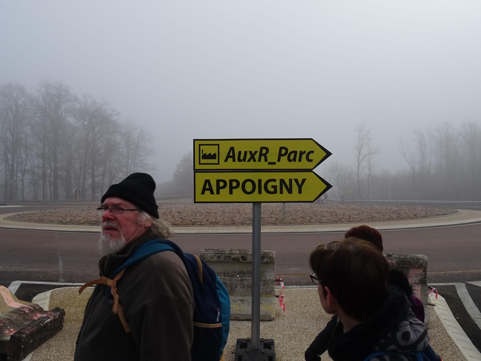 AuxR-Parc
