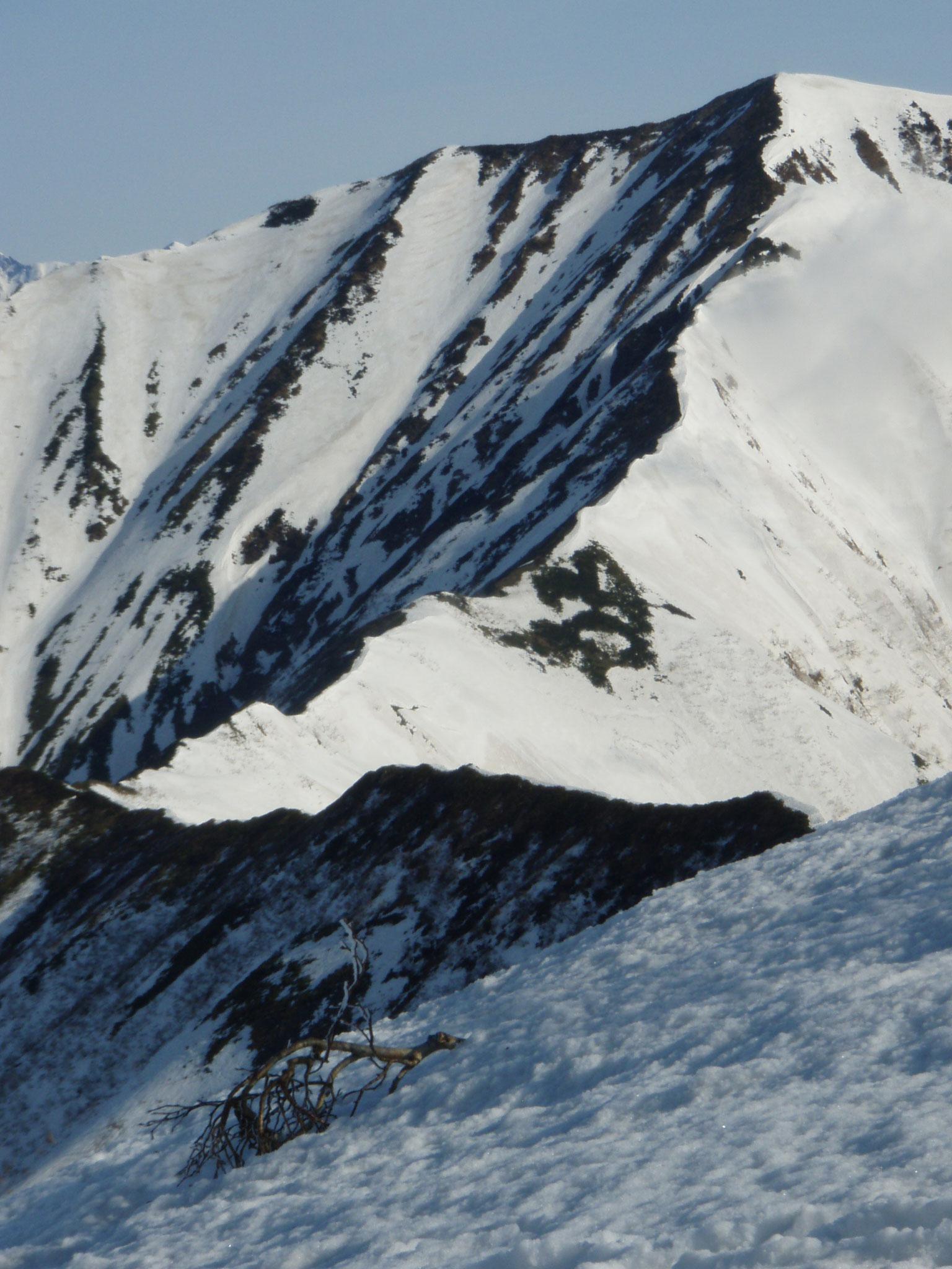 日高山脈ピリカヌプリ 5月
