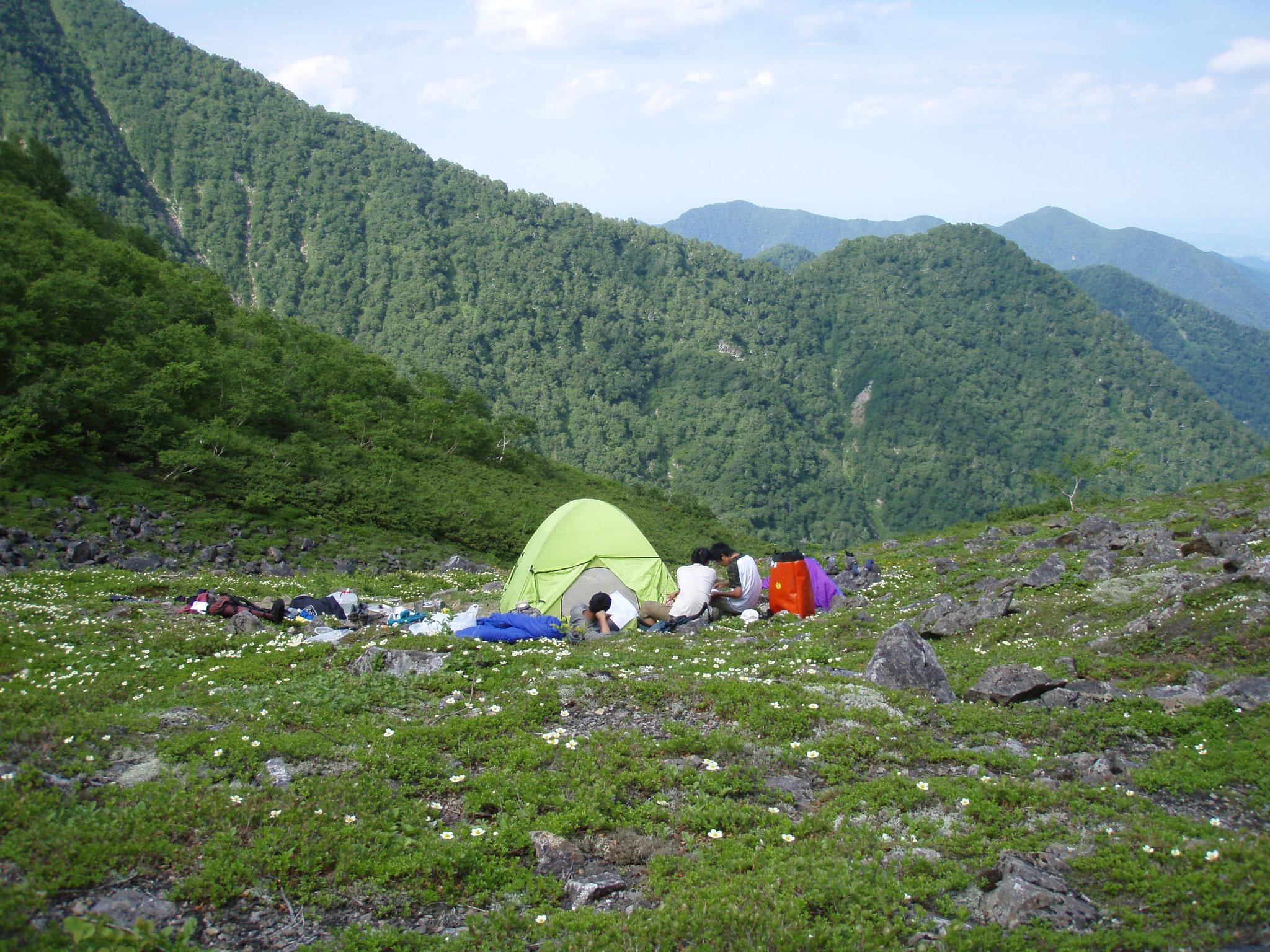 ぺテガリ岳Cカールキャンプ地 8月