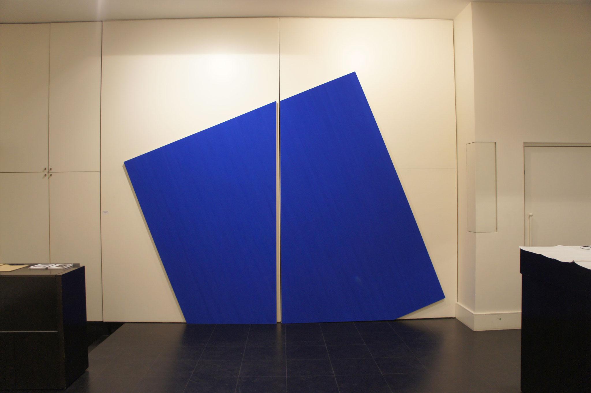 Pigment et colle de peau sur toile - 350x350x5 cm - Exposition Galerie Lahumière (Paris)