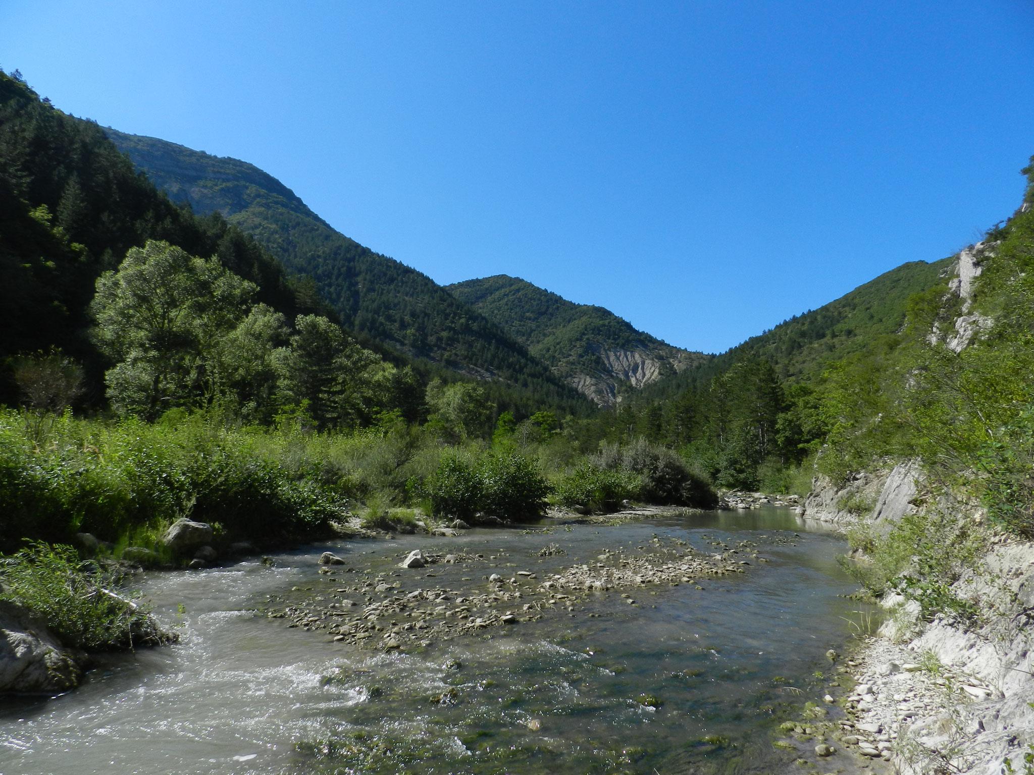 Balades et baignades en rivière