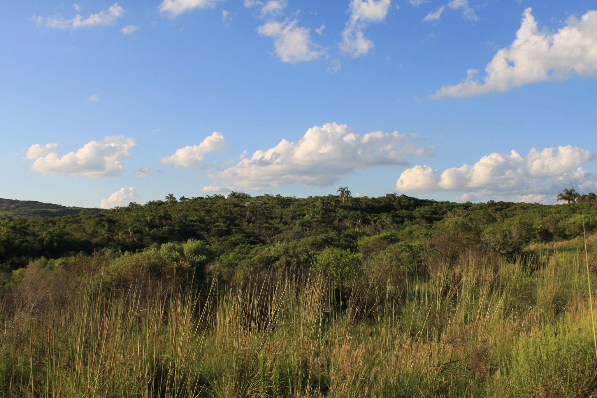 Das Hinterland der Region Maldonado