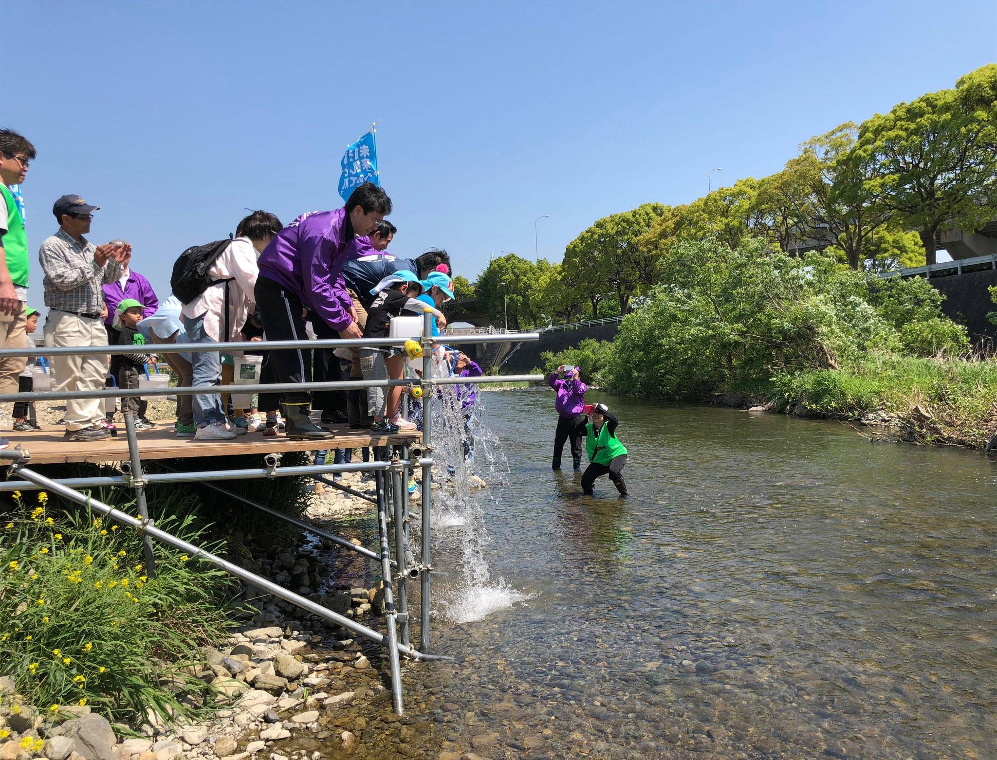 04月21日 紫川清掃とアユの放流②