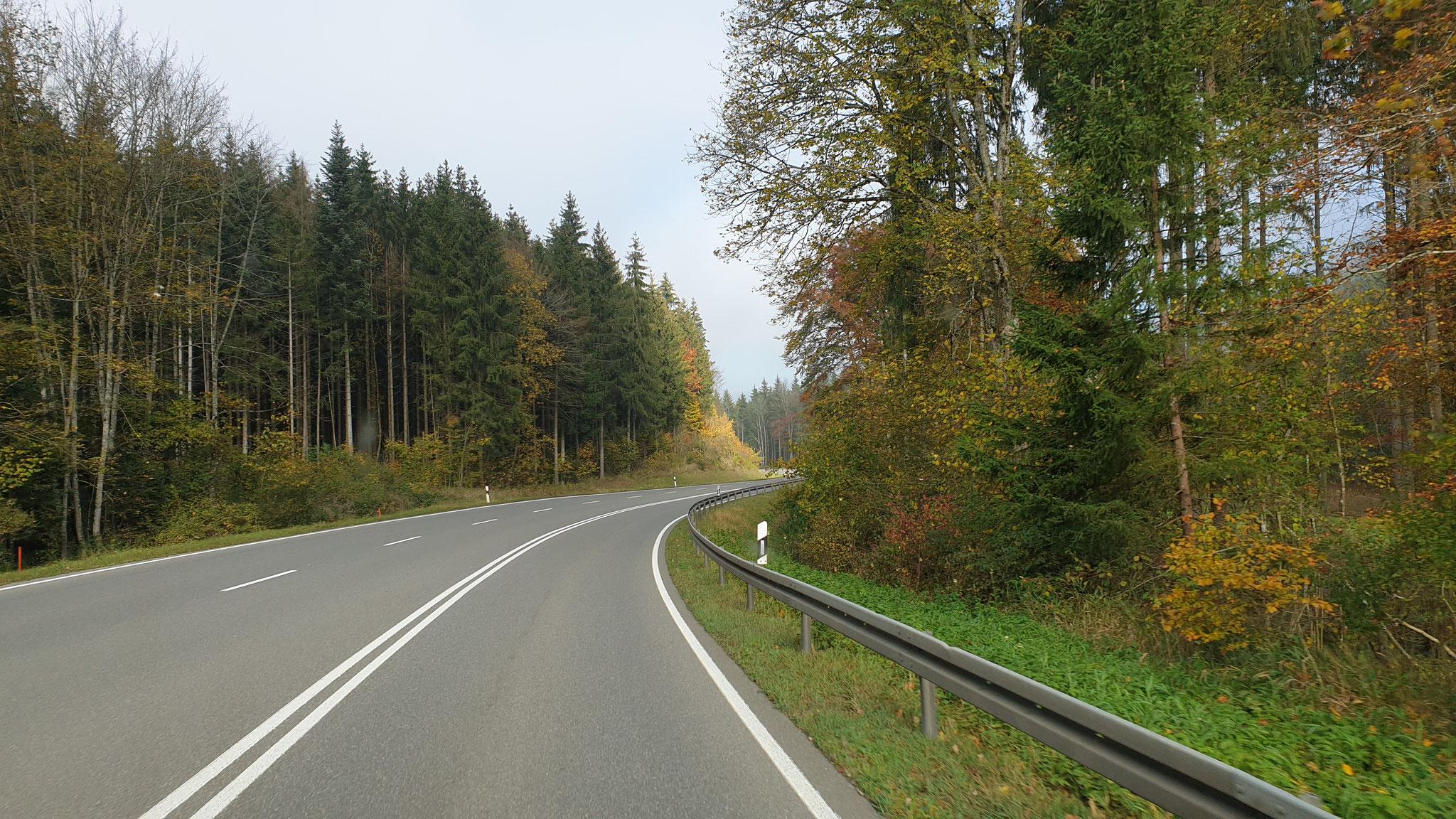 Herbstlicher Weg an Blumberg vorbei