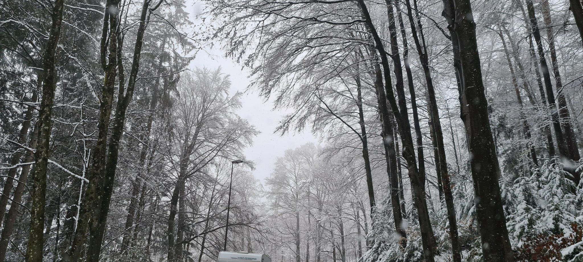 ....wie im Winter...