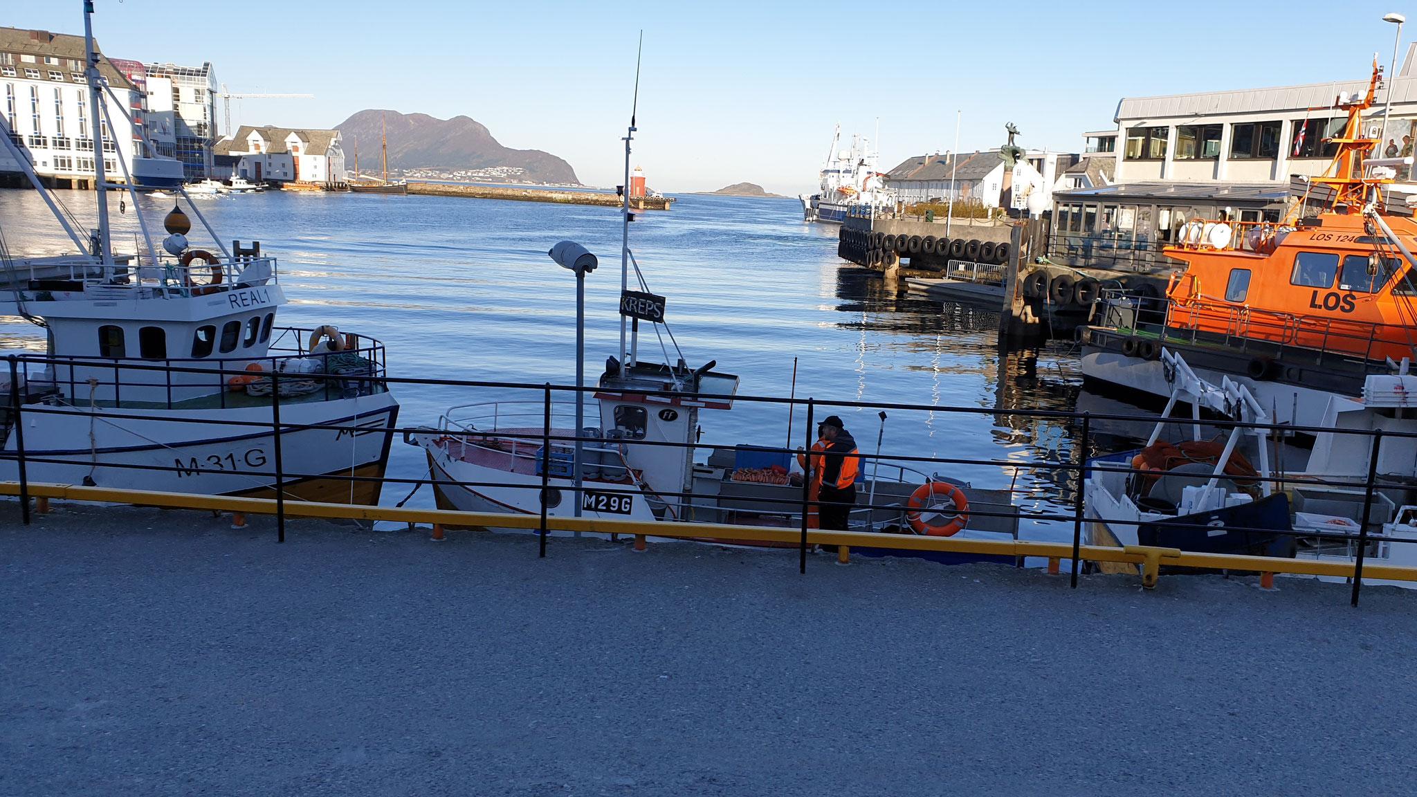 Die Fischer verkaufen ihren Fang...