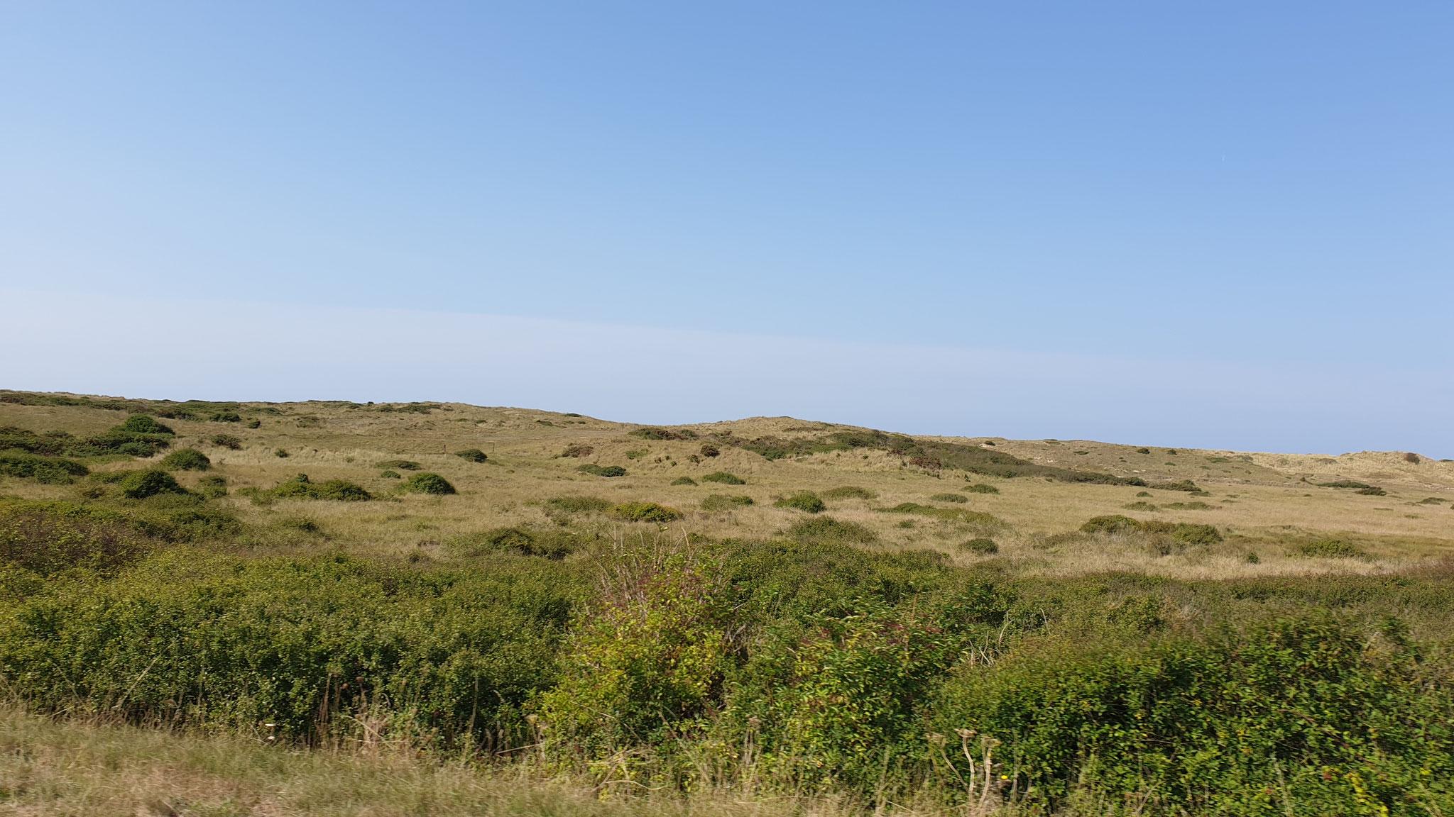 Dünenlandschaften gibt es hier...