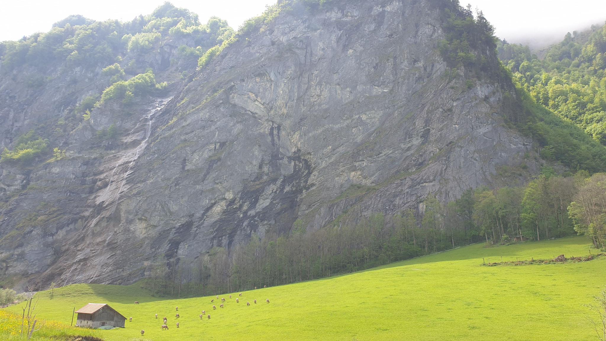 Auch bei uns in der Schweiz ist es traumhaft schön!