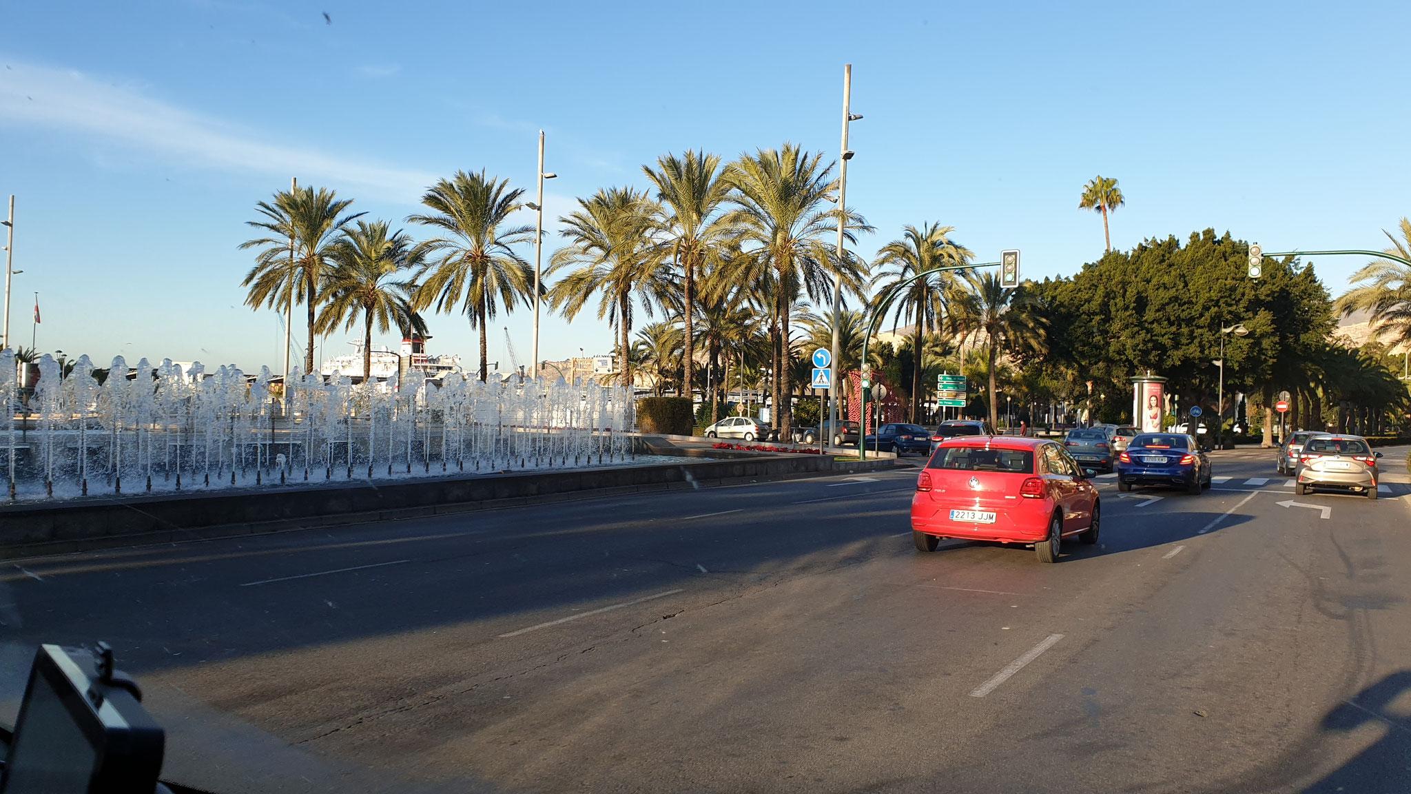 Palmen und Hafen