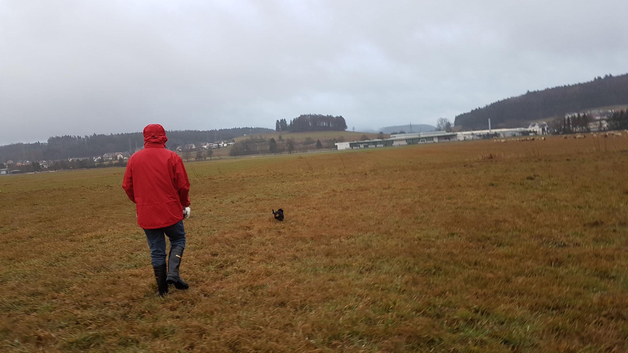 Uns selbst mit Hunden im WoMo ist Regen nicht schlimm...