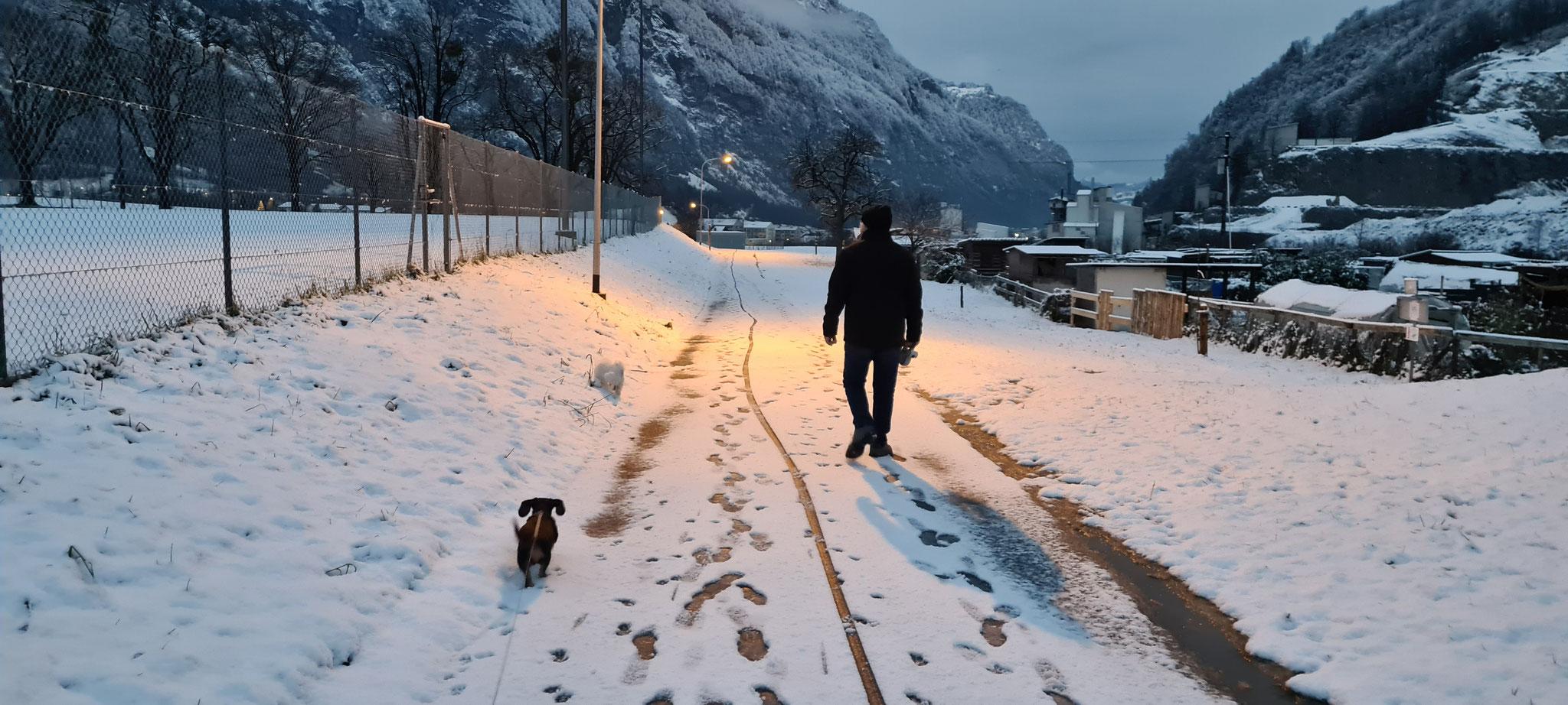 Herrlich, so ein Winterspaziergang...