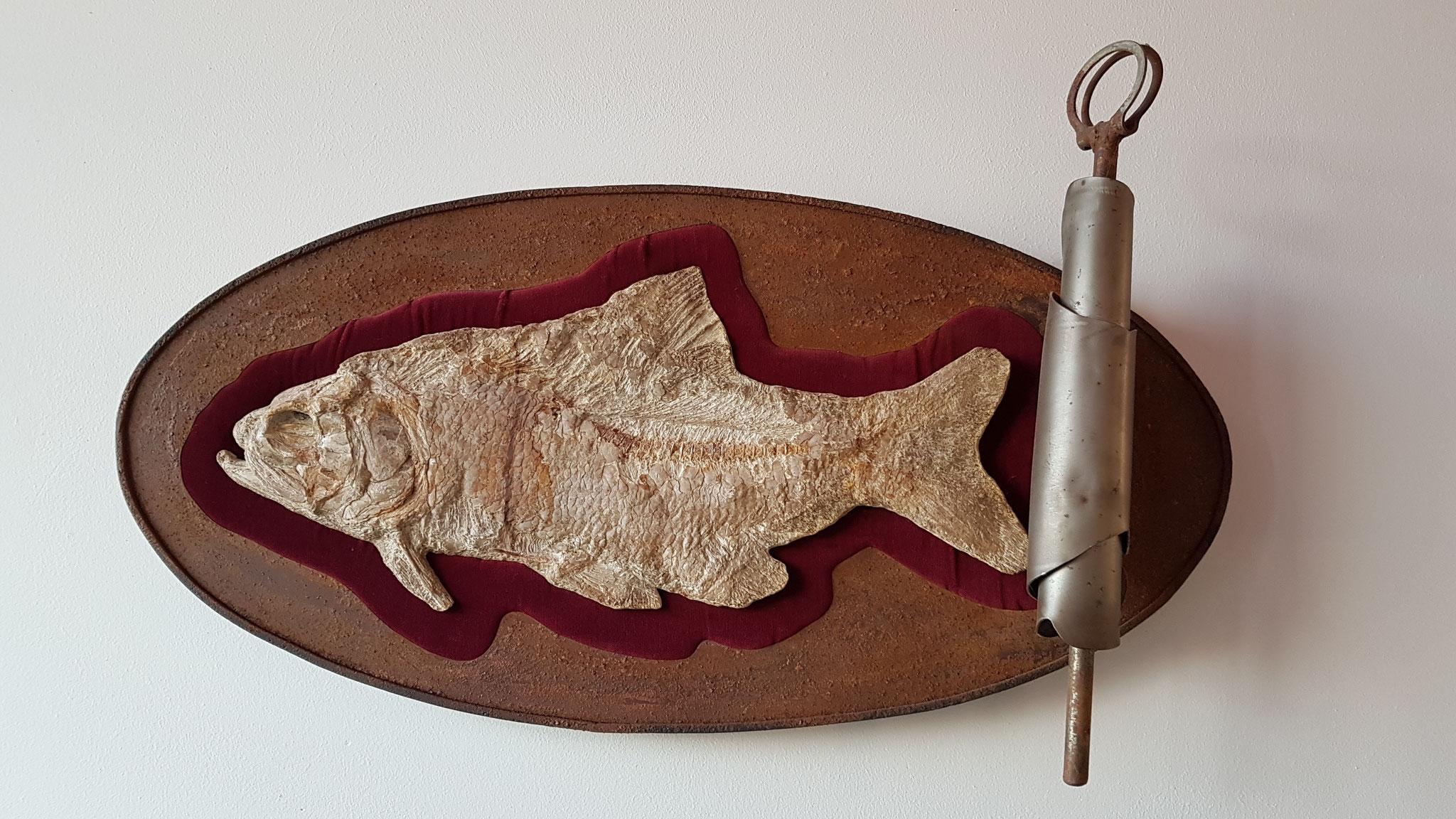 Millionen Jahre alte Sardine?