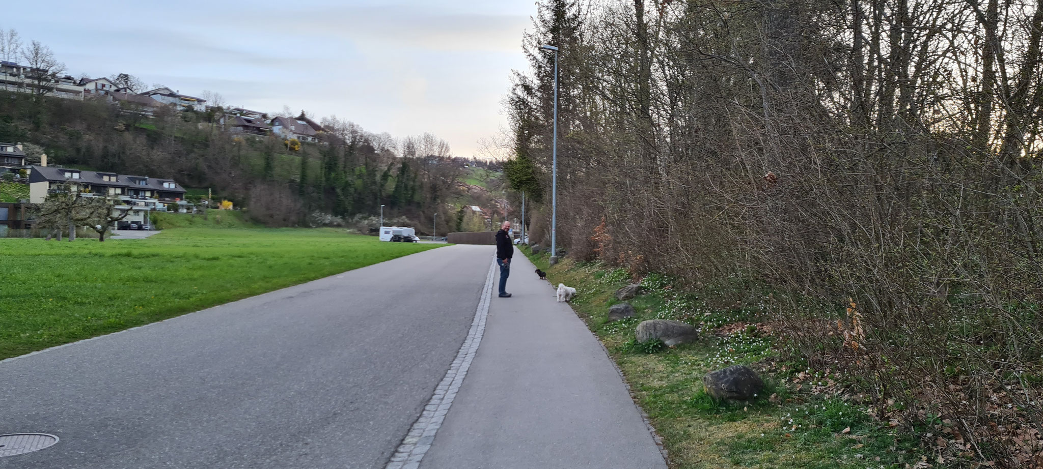 Morgenspaziergang in Steffisburg