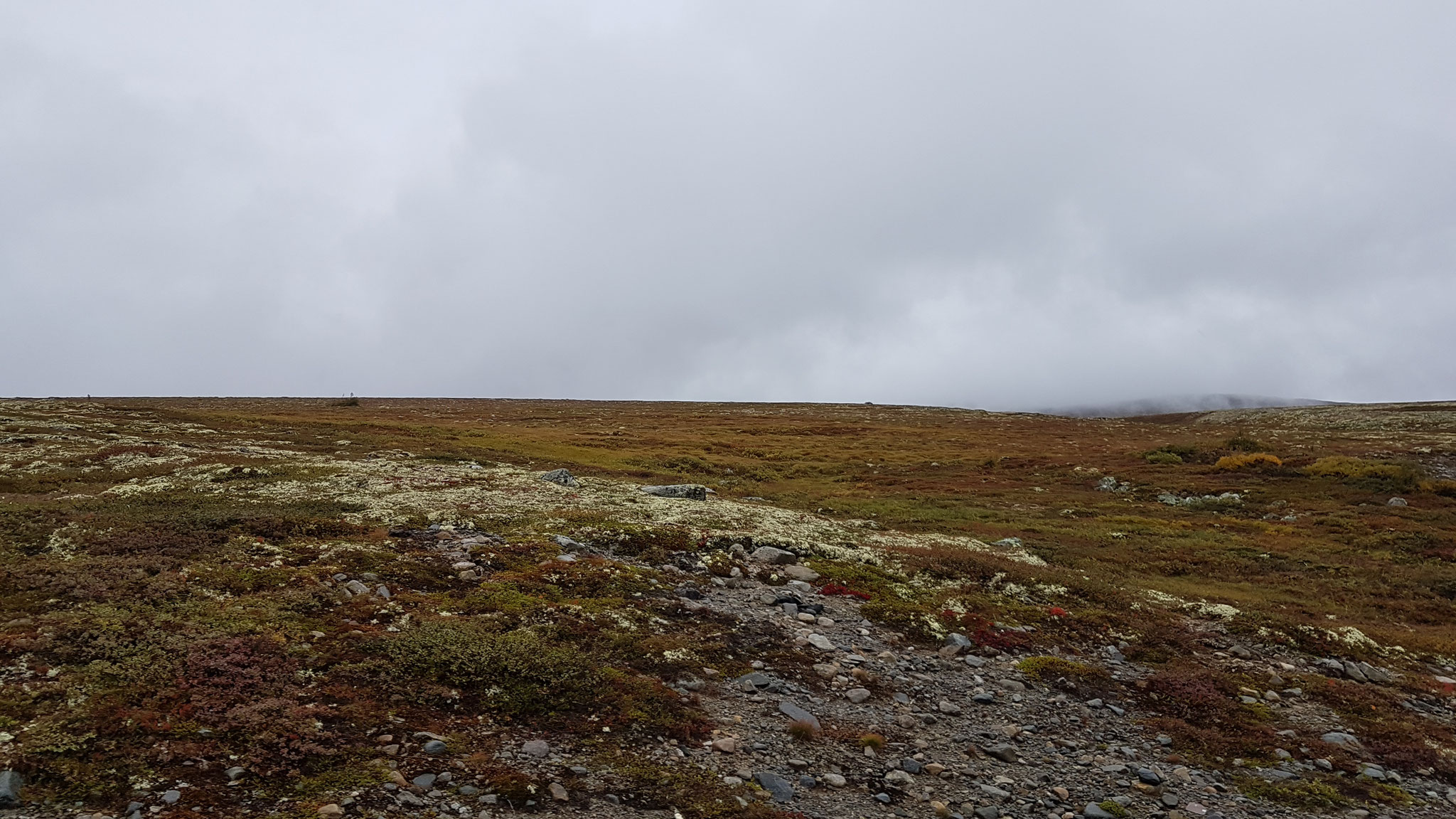 Hardangervidda - Hochebene