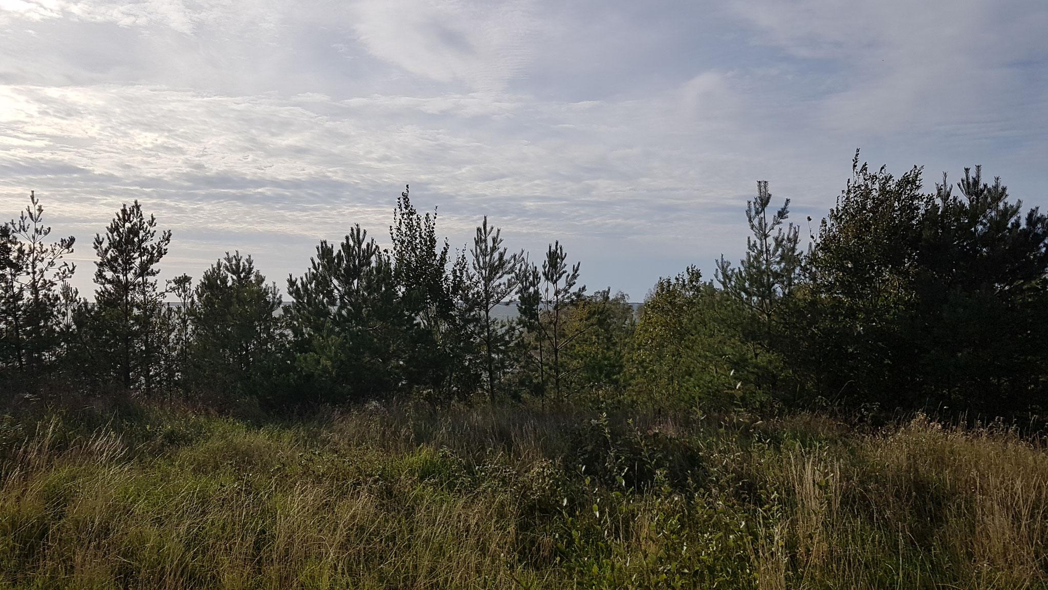 Wer sieht den grossen Vänern-See von Schweden?