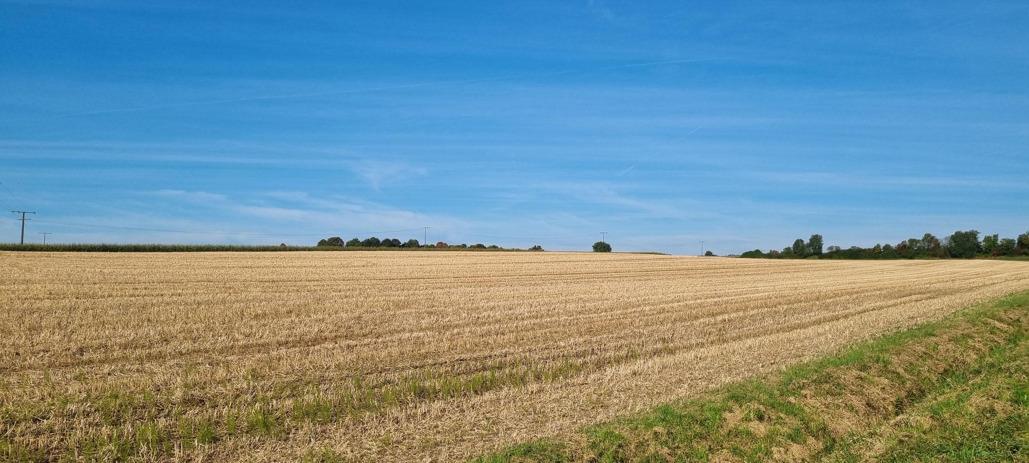 Wunderschöne Landschaft rund um Dietingen