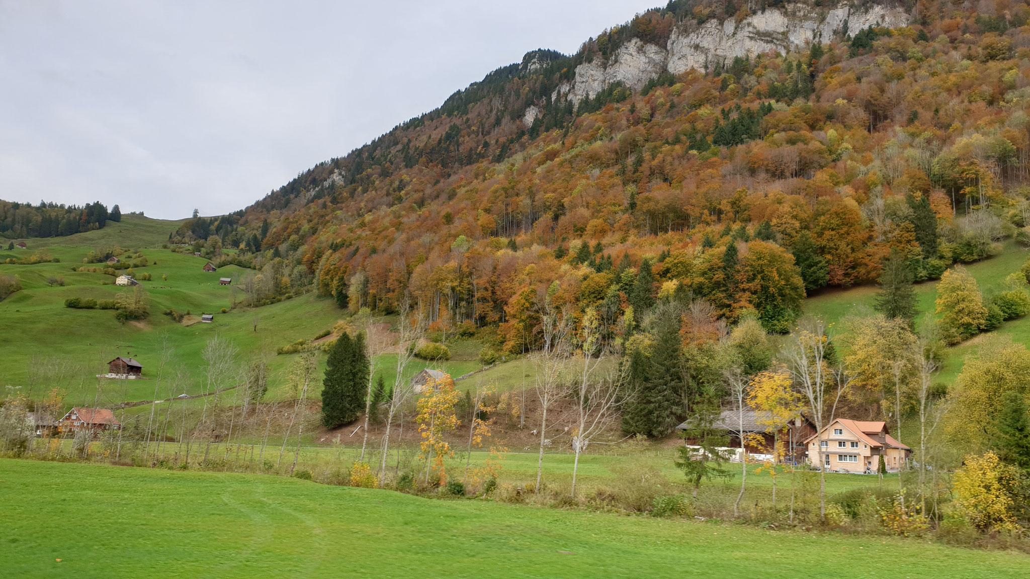Der goldene Herbst in der Schweiz
