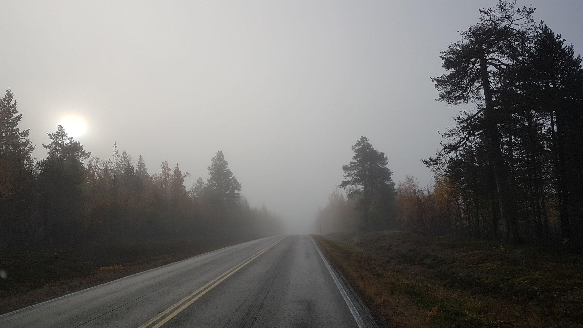 """Und schon sind wir wieder """"on the Road"""""""
